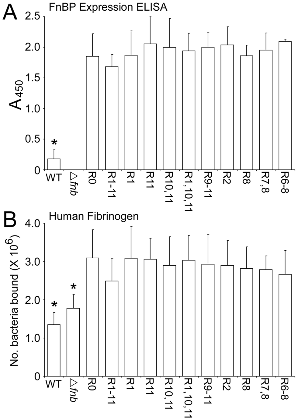 FnBPA variants are expressed at equivalent levels on the surface of <i>S. aureus</i> 8325.4.