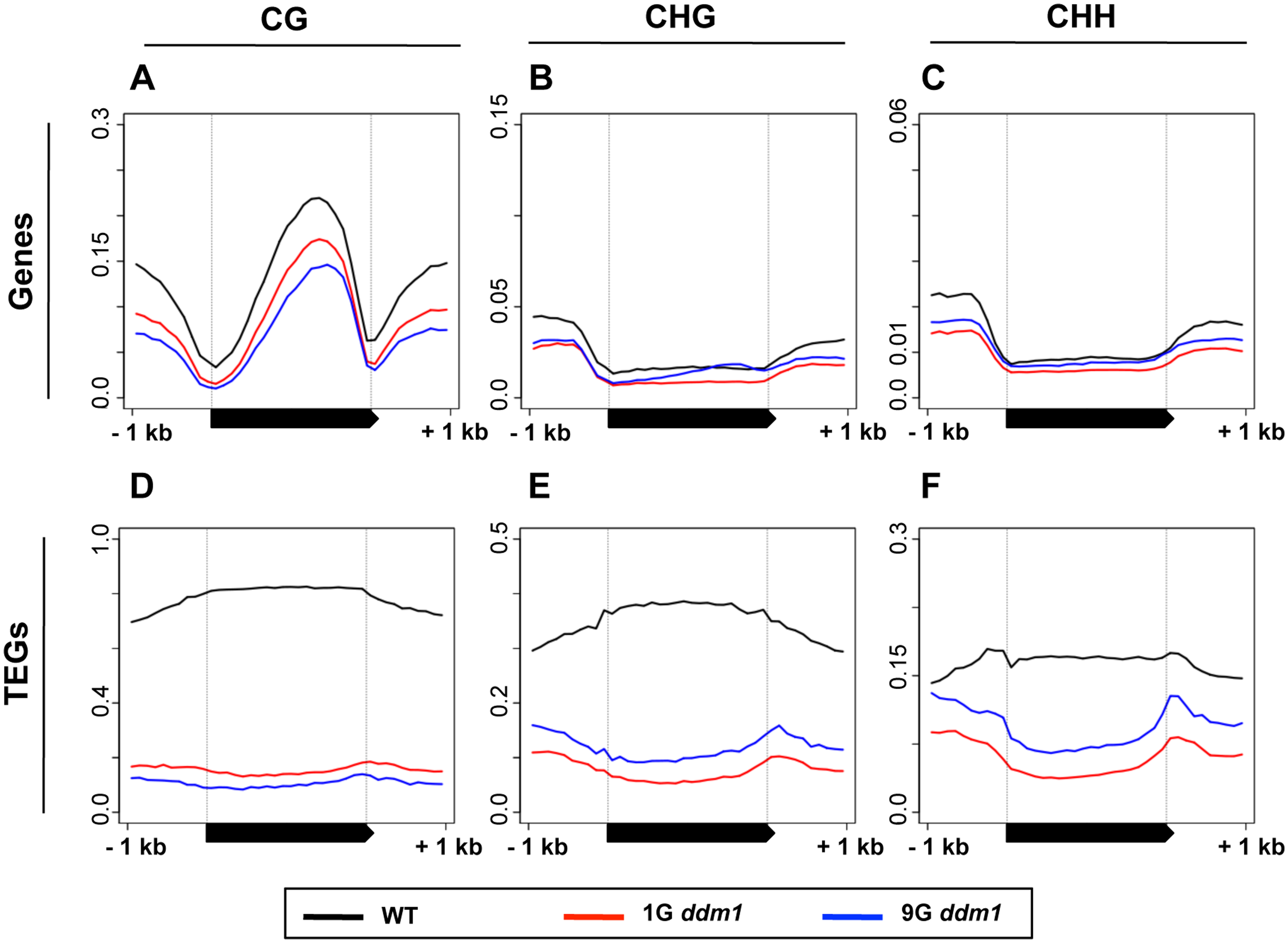 DNA methylation in <i>ddm1</i> mutants before and after repeated self-pollination.