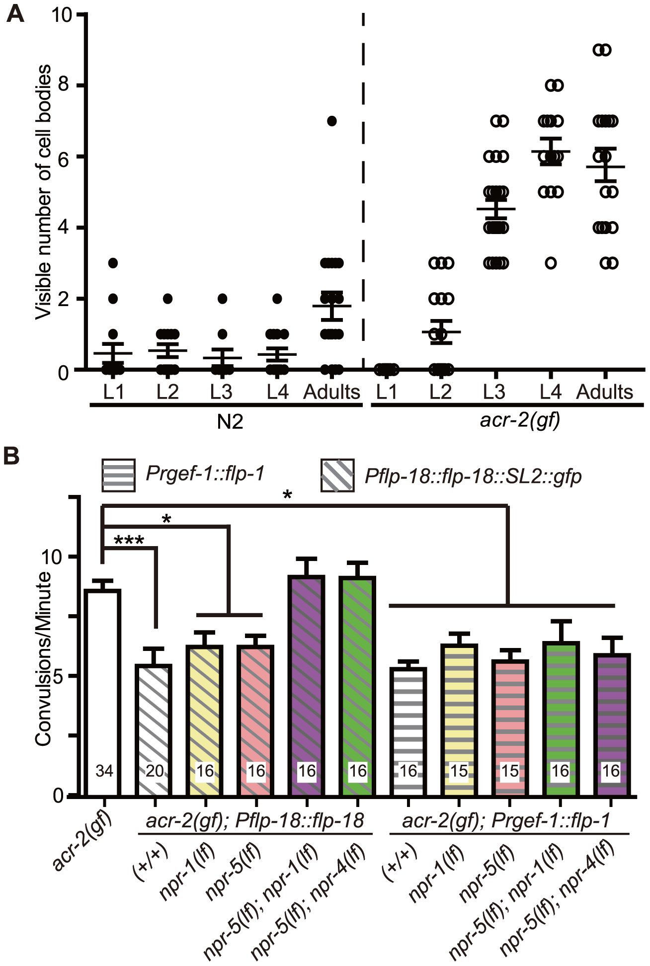 Induced expression of FLP-18 in <i>acr-2(gf)</i> correlates with the onset of convulsions, and high levels of FLP-18 or FLP-1 suppress convulsions.