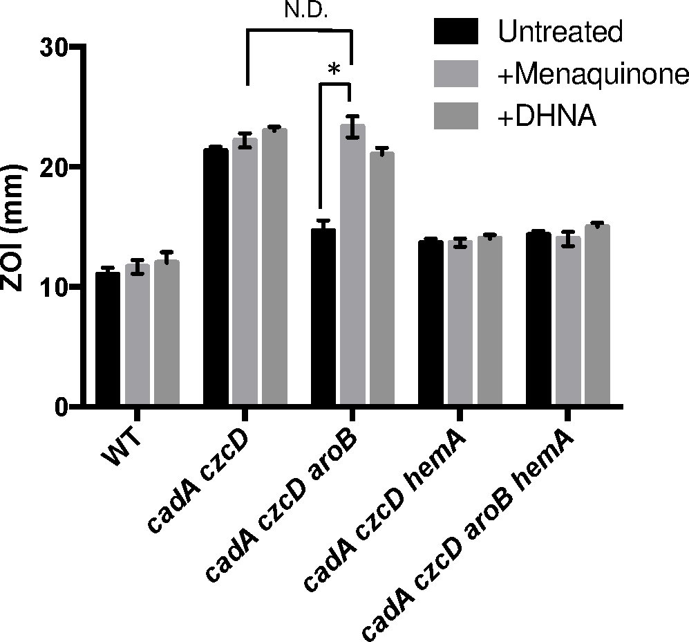 Menaquinone and heme biosynthesis contribute to intracellular Zn(II) intoxication.