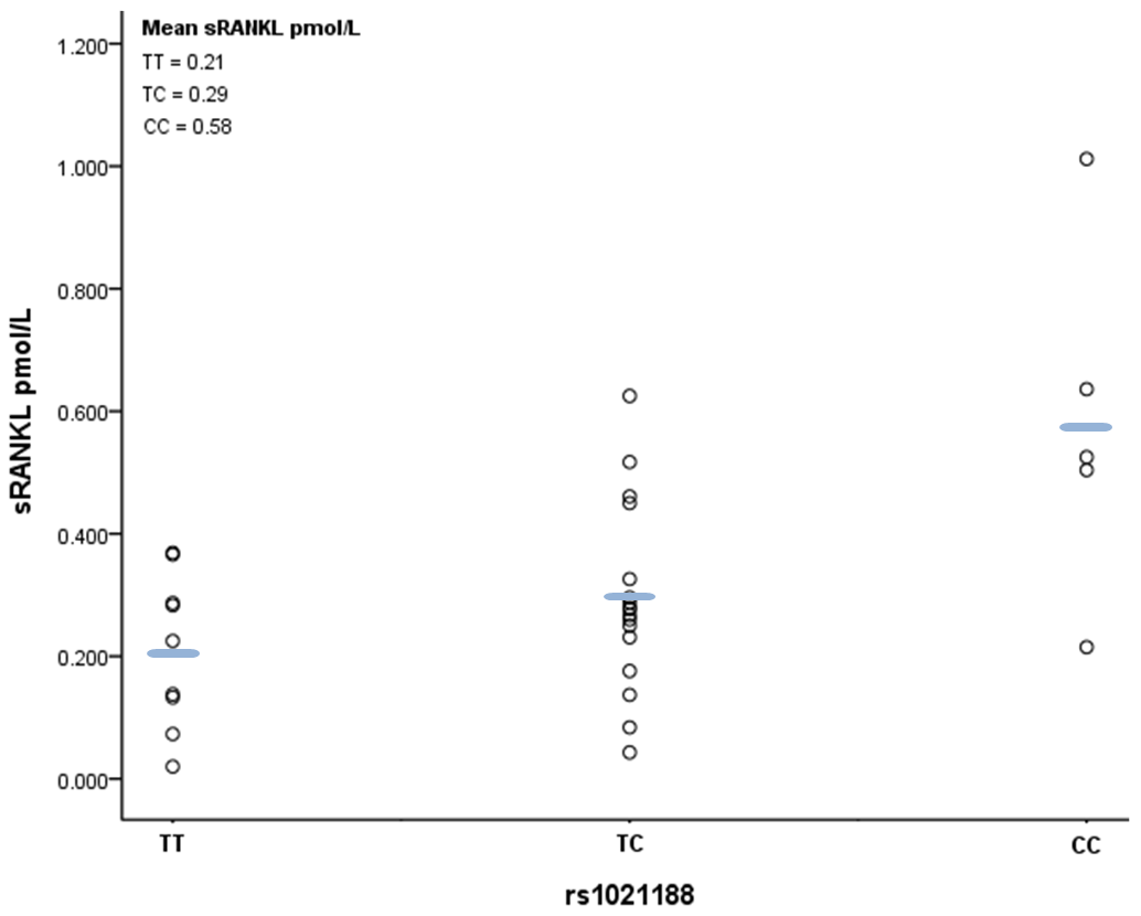 Scatter plot and mean values of free plasma RANKL levels according to rs1021188 genotype.