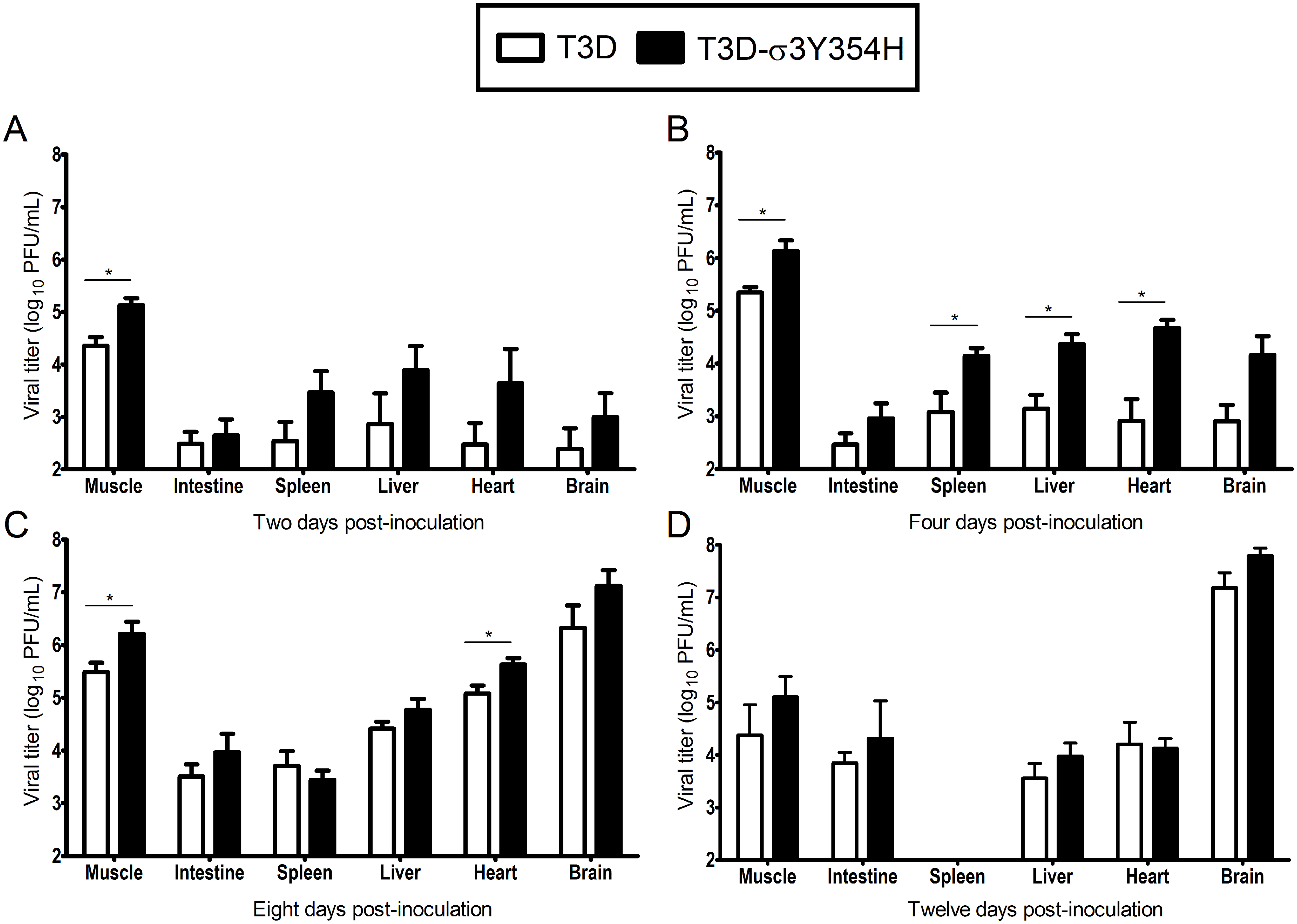 Viral loads are higher in mice infected with T3D-σ3Y354H.