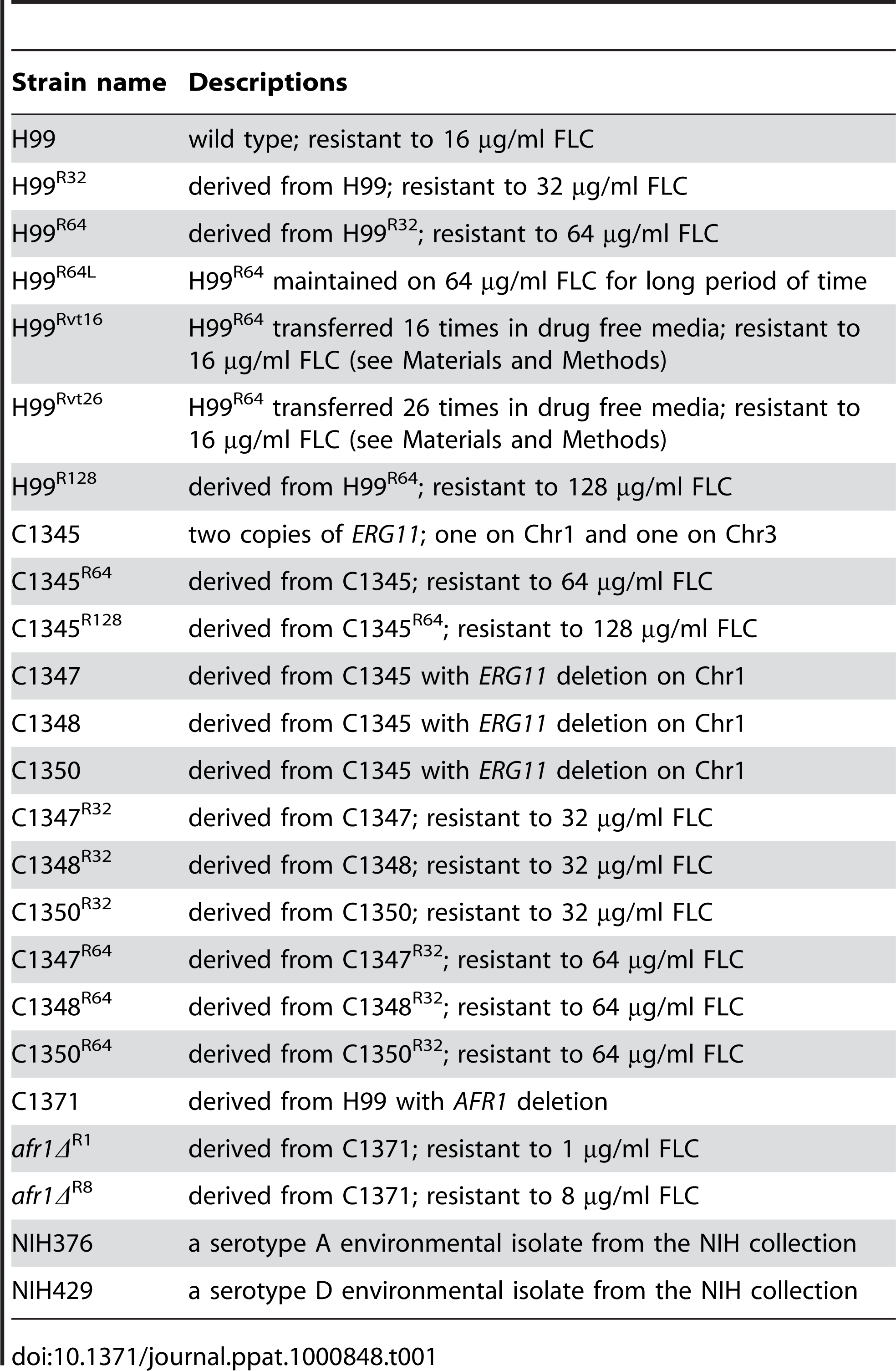 Strains used in the study.