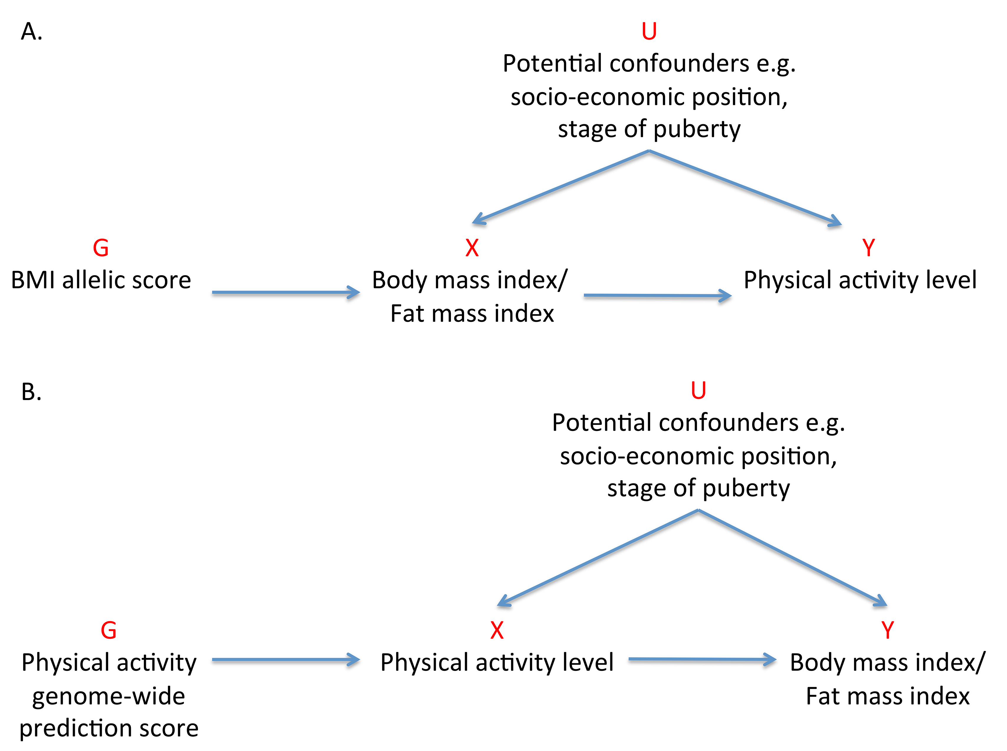 Addressing the causal directions of effect in the association between adiposity and physical activity with the use of allelic scores and Mendelian randomization analysis.