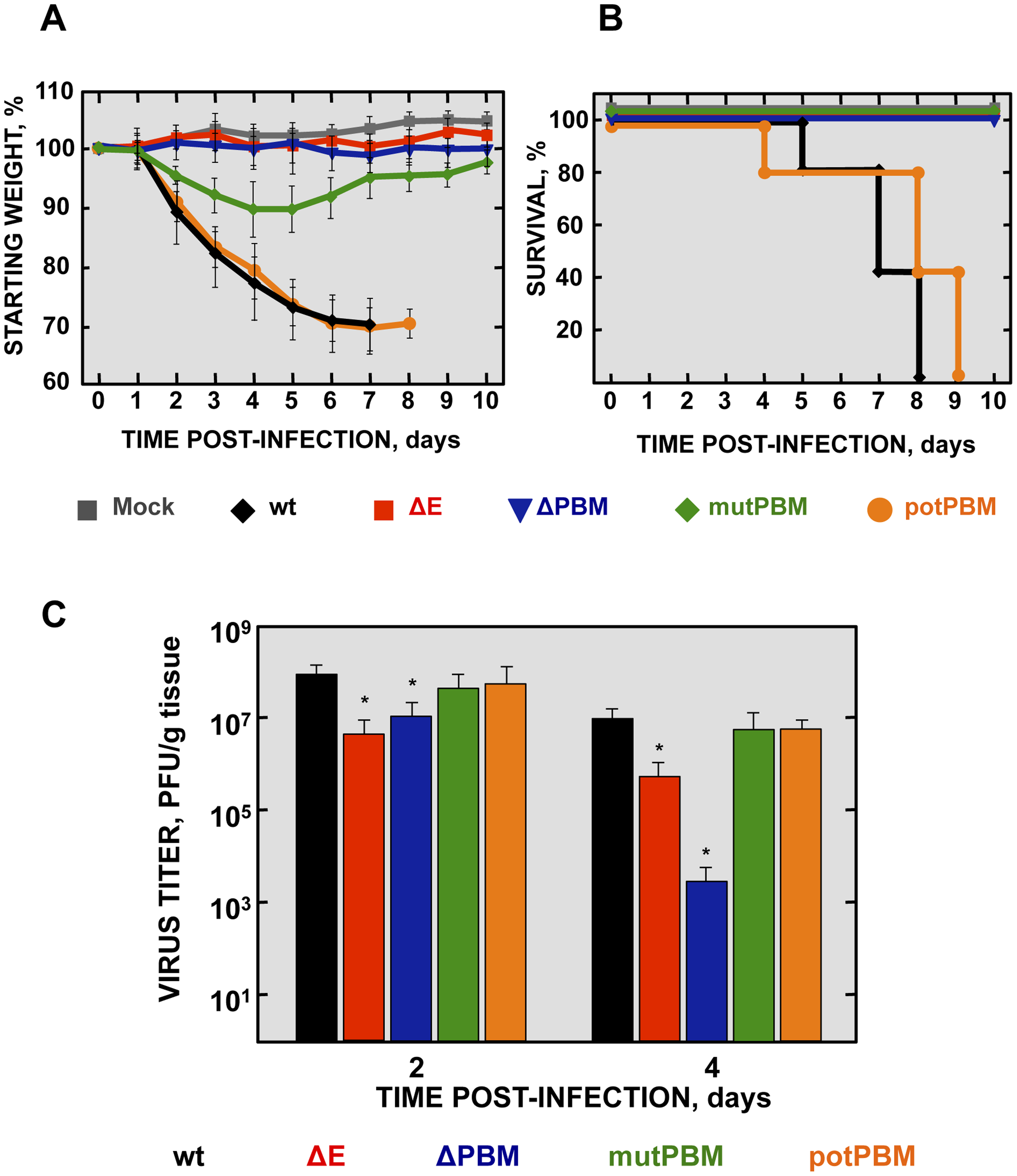 Virulence and viral growth of SARS-CoV-E-PBM-infected mice.