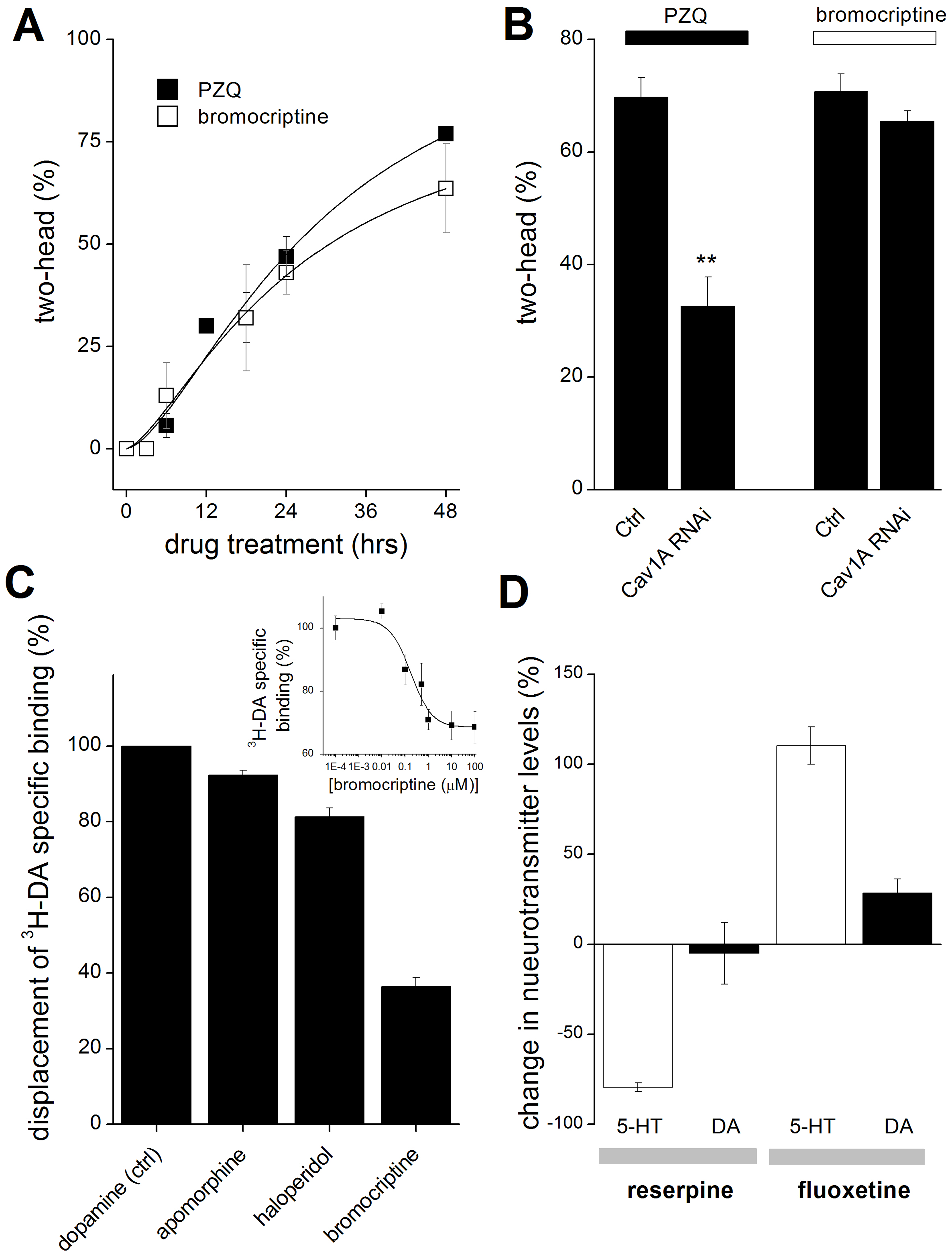 Analysis of drug action and selectivity in the planarian system.