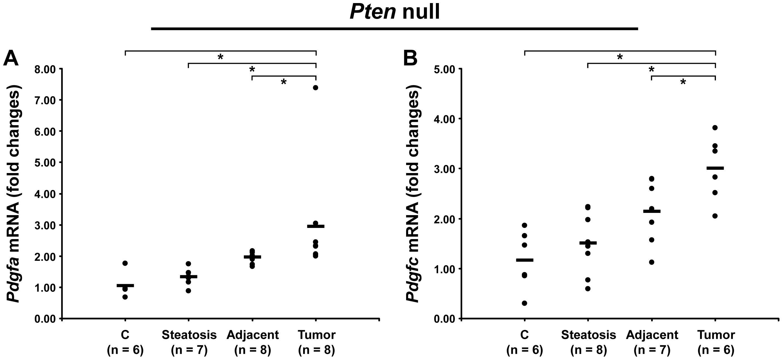 Up-regulation of <i>Pdgfa</i> and <i>Pdgfc</i> mRNAs in <i>Pten</i> null tumors.