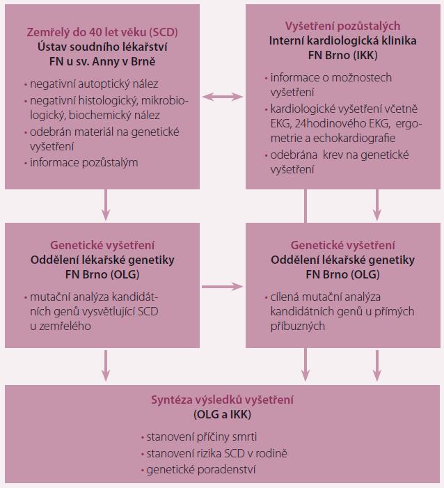 Schéma 1. Vyšetřování zemřelých náhlou smrtí a jejich příbuzných v jihomoravském regionu.
