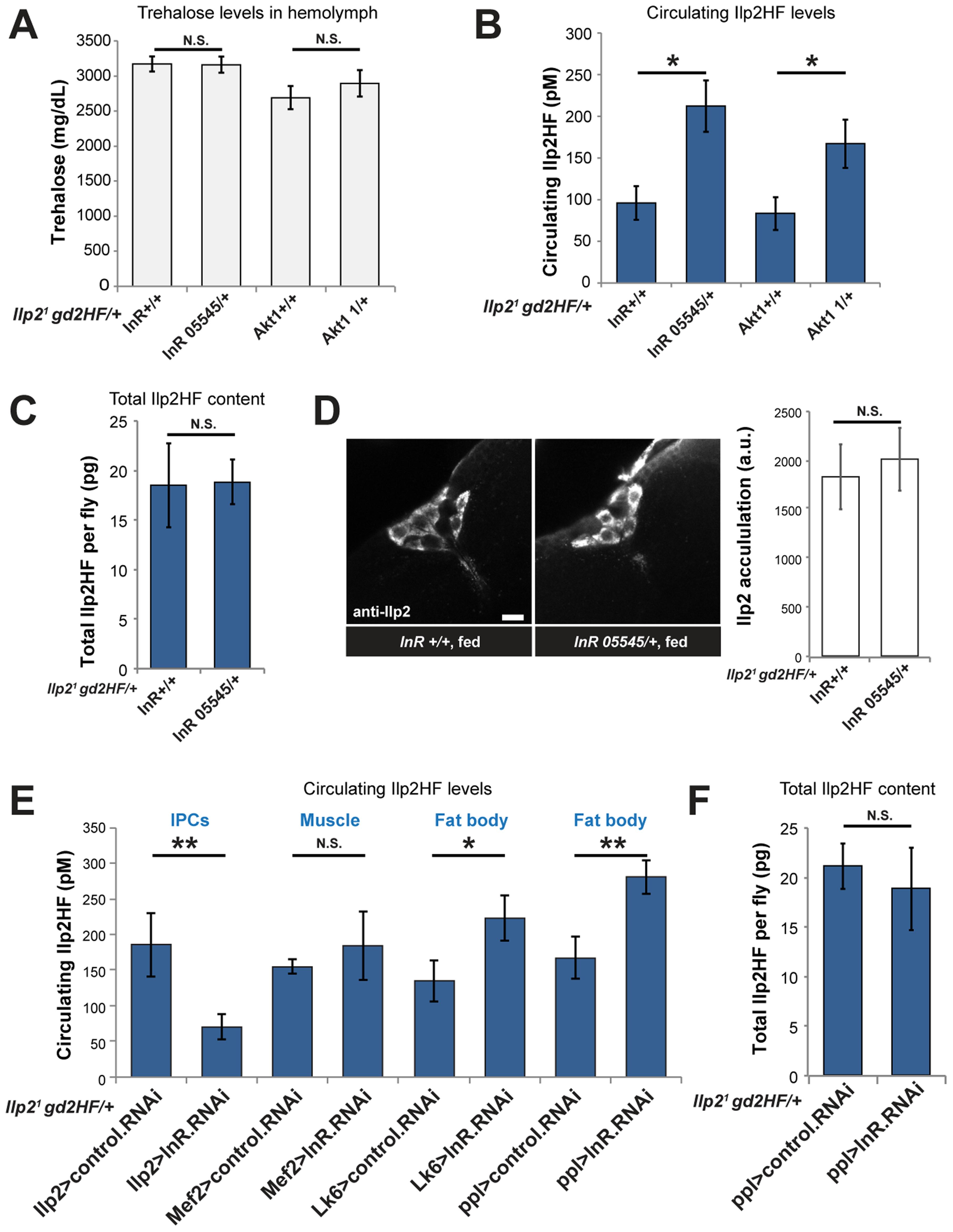 Enhanced insulin secretion from impaired peripheral insulin signaling in <i>Drosophila</i>.