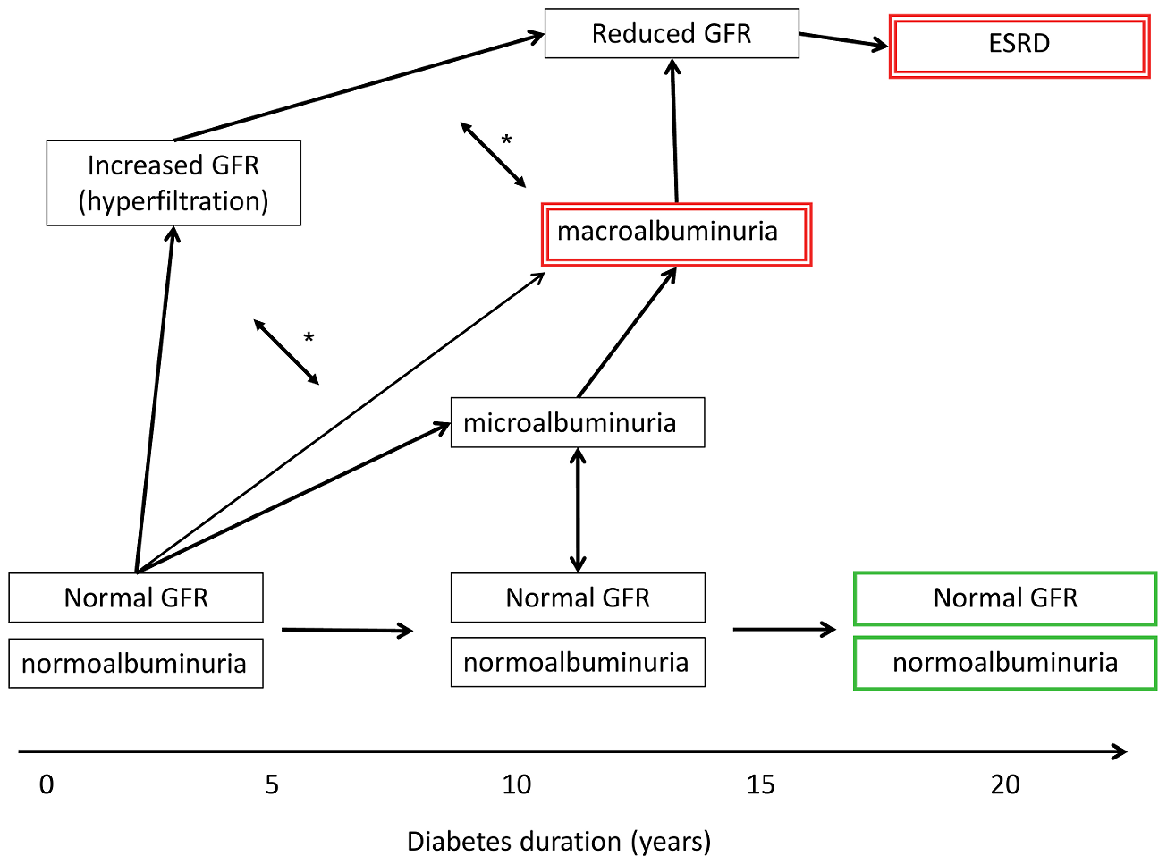 Schematic presentation of variable clinical courses of diabetic nephropathy.