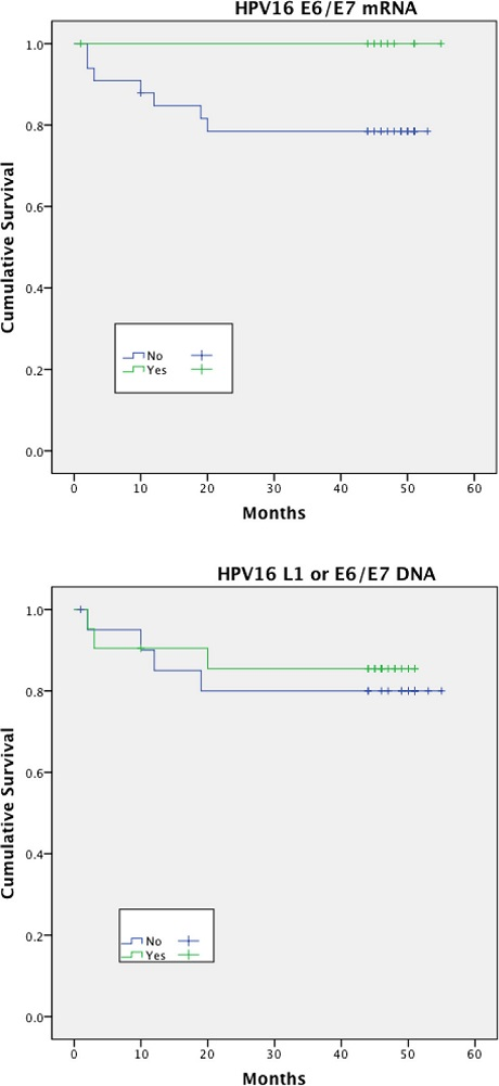 Disease specific survival (DSS)<sup>†</sup> stratified by HPV mRNA/DNA (Log- Rank multiple regression analysis <i>p</i> = 0.17 and <i>p</i> = 0.66 respectively)