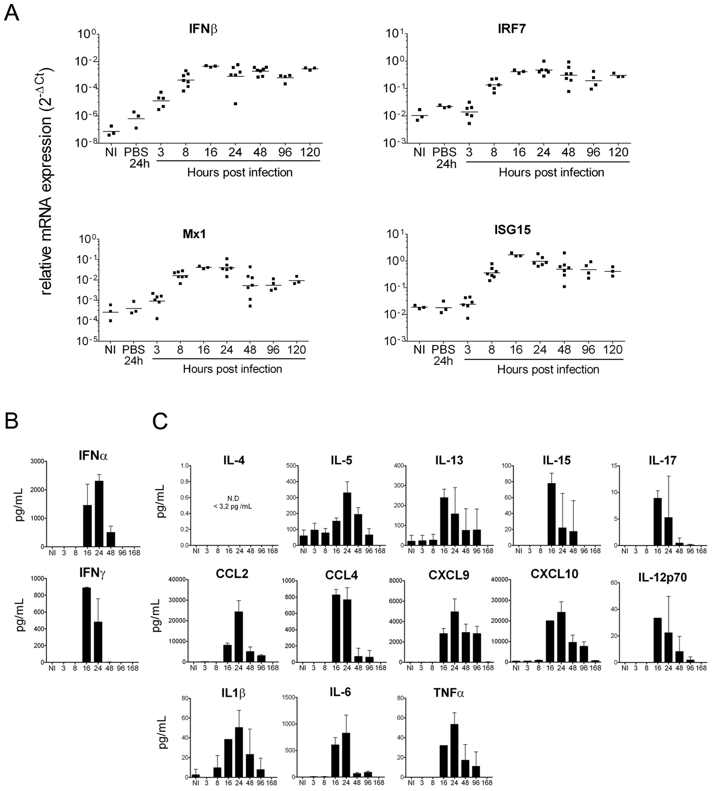 Neonatal mice mount a robust IFN and pro-inflammatory cytokine/chemokine response following CHIKV infection.