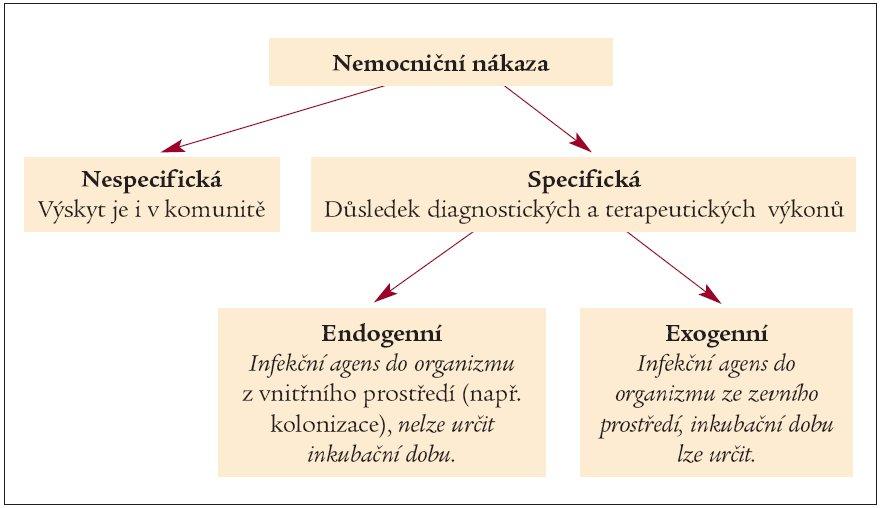 Schéma 1. Nemocniční nákazy.