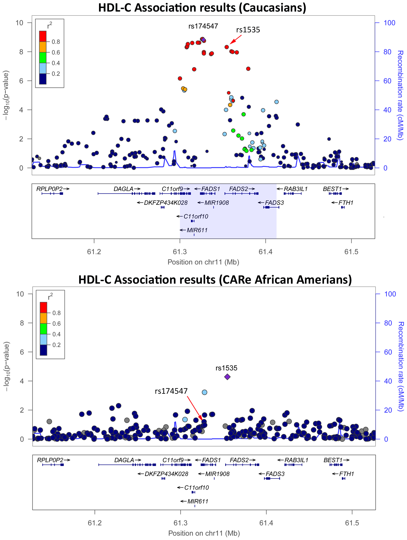 HDL-C association results in Caucasians (top panel) <em class=&quot;ref&quot;>[<b>26</b>]</em> and in the CARe African Americans (bottom panel) at the <i>FADS</i> locus.