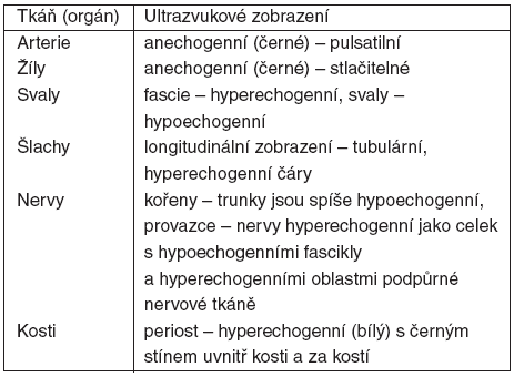 Ultrazvukové zobrazení jednotlivých tkání a orgánů