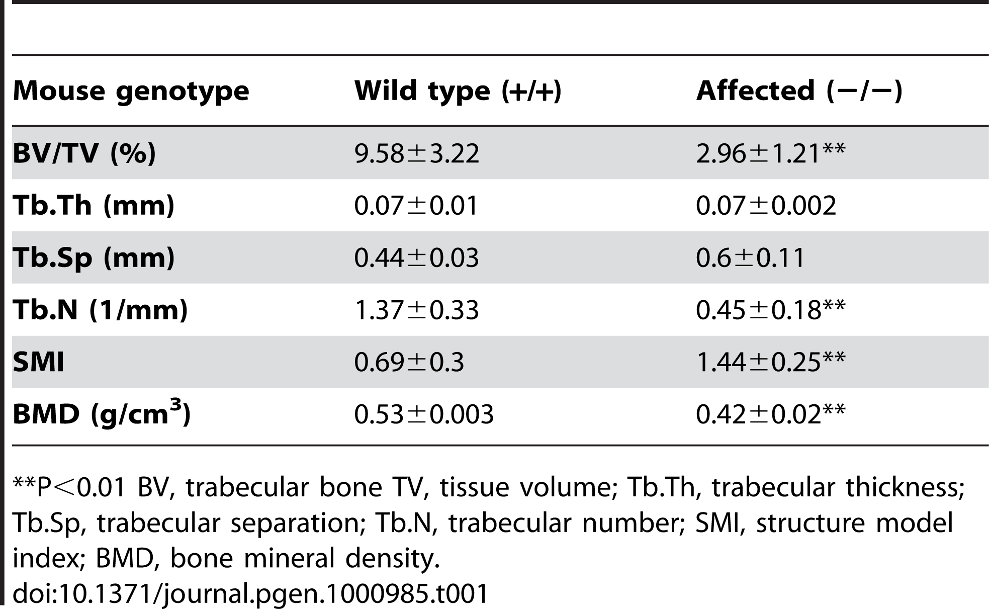 Structural parameters for trabecular bone.