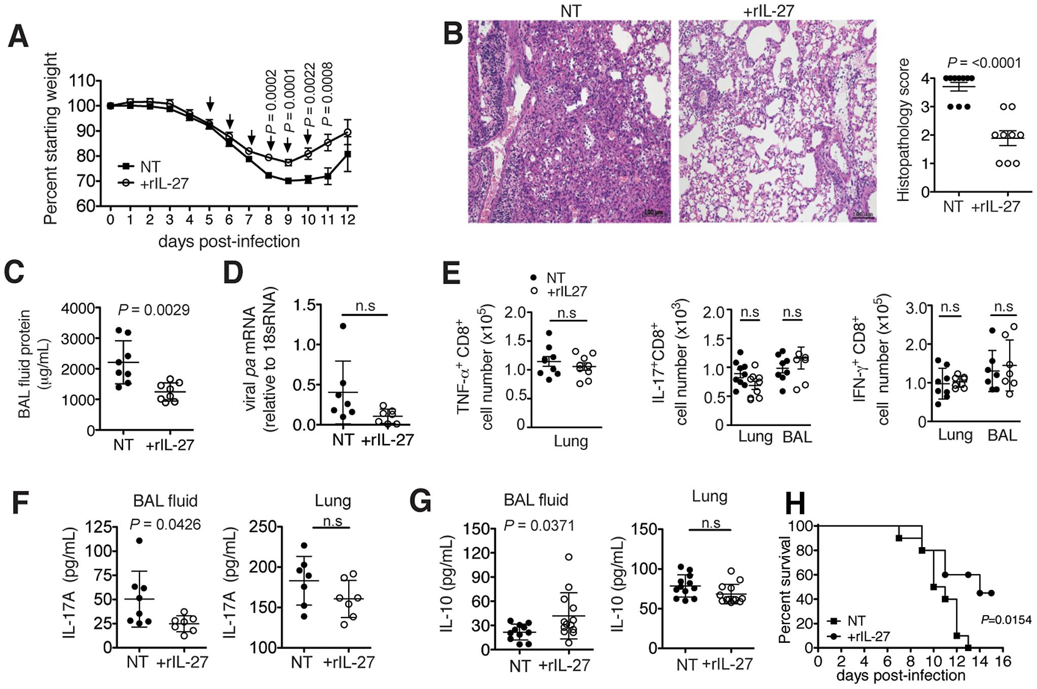 Late-phase treatment with rIL-27 alleviates lung immunopathology.
