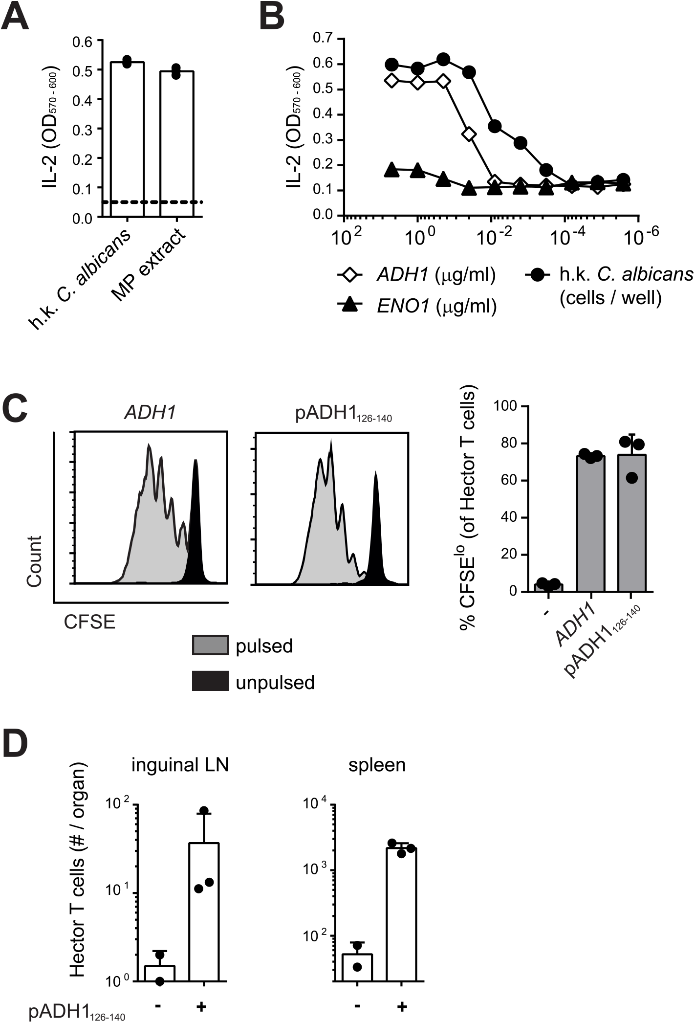Hector T cells recognize residues 126–140 of <i>C</i>. <i>albicans</i> ADH1.