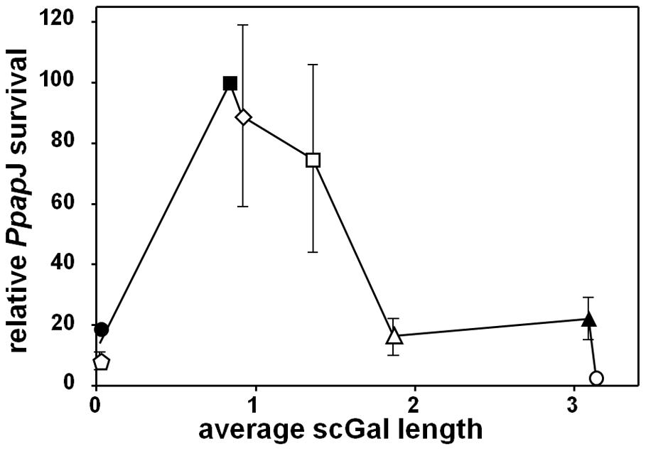 Relationship between <i>L. major</i> scGal-LPG PAMPs and <i>Ppap</i>J midgut survival post-blood meal expulsion.