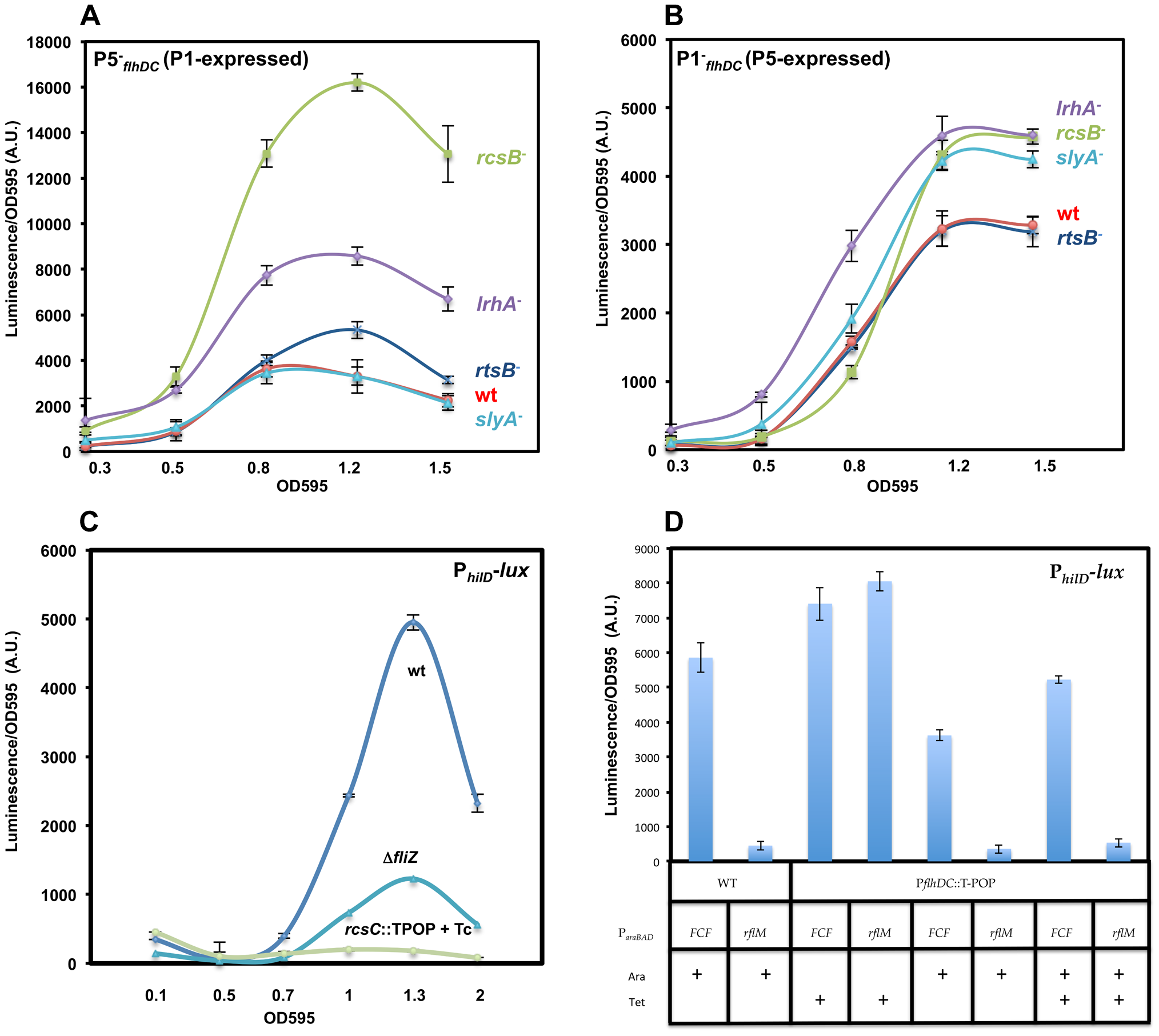 Effects of RcsB, LrhA, RtsB and SlyA on transcription of P1<i><sub>flhDC</sub></i> and P5<i><sub>flhDC</sub></i>.