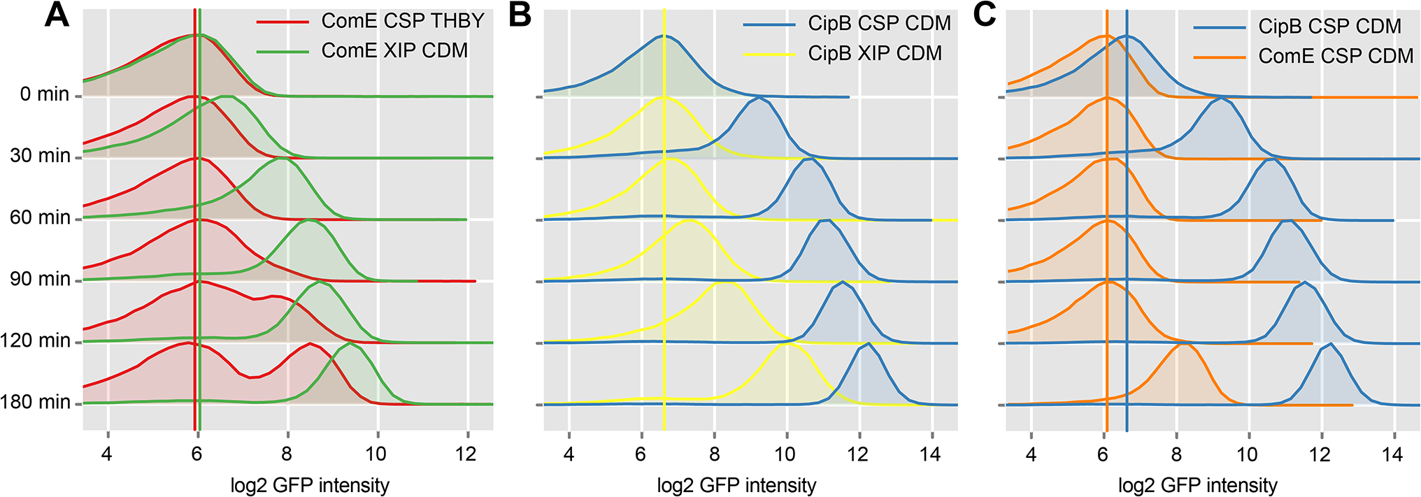 Time resolved analysis of <i>comE</i> and <i>cipB</i> expression using flow cytometry.