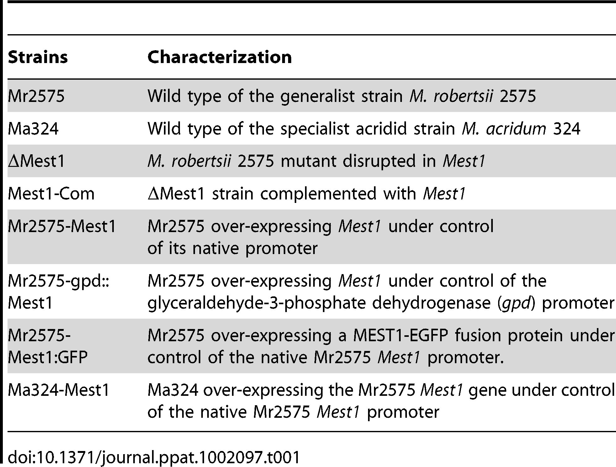 List of <i>Metarhizium</i> strains used in this study.