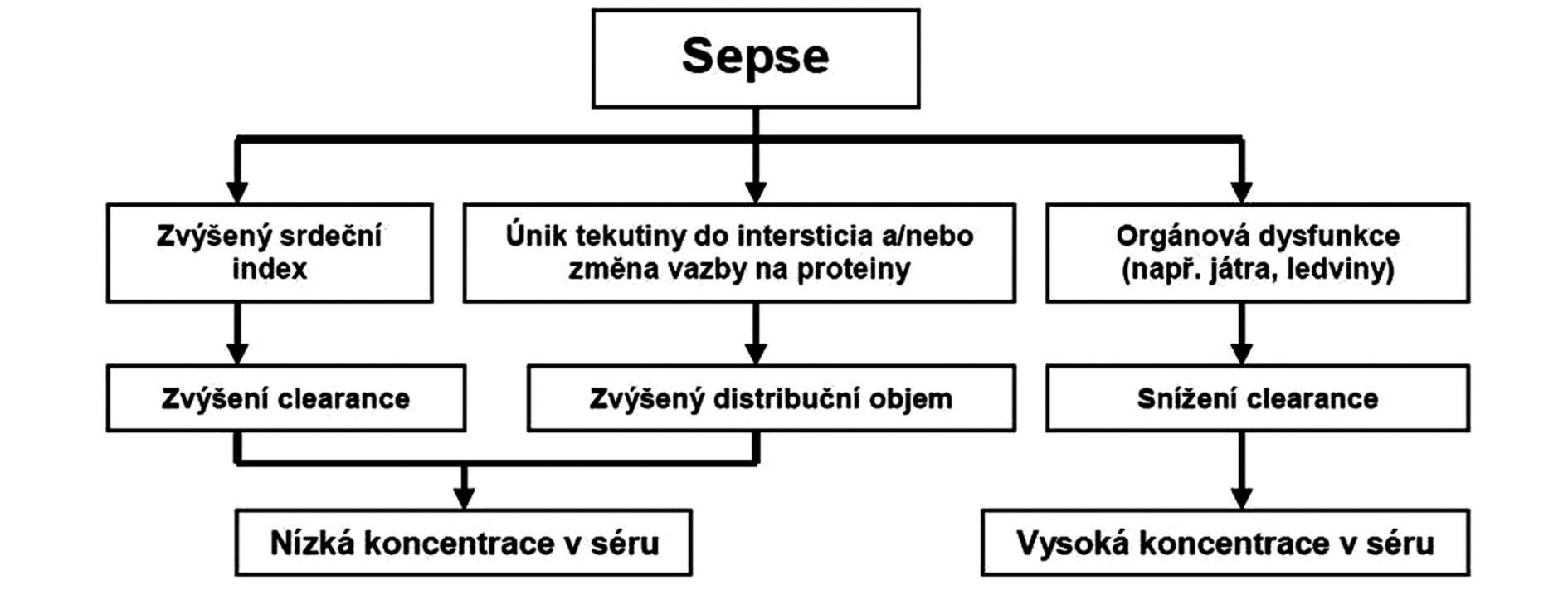 Schéma základních patofyziologických změn při sepsi a jejich vliv na farmakokinetiku