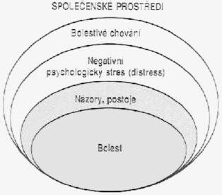 Schéma 3. Biopsychosociální model chronické bolesti zad (podle Waddella, 1998)