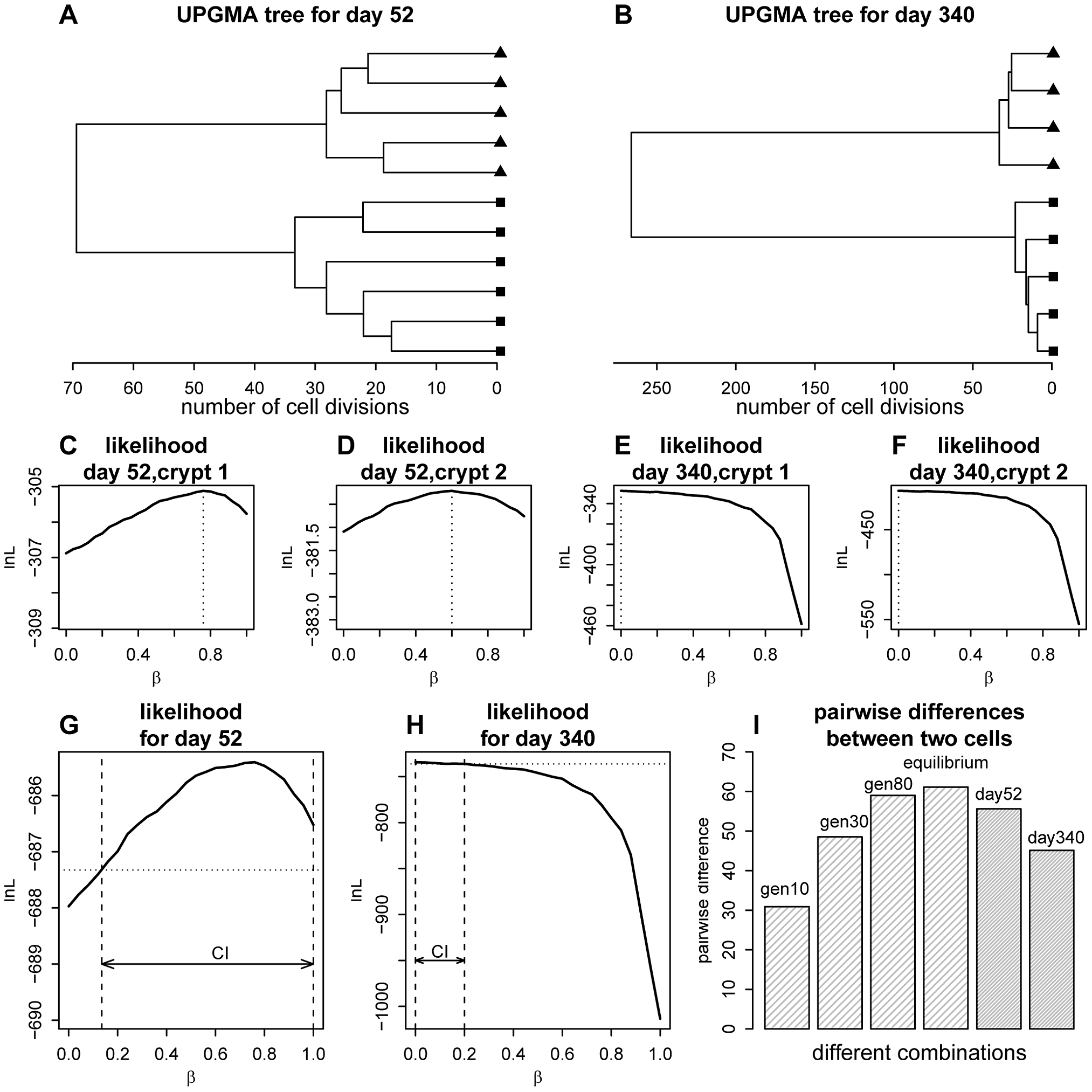Phylogenetic relationships for the crypt single cells and likelihood curve for the proportion of asymmetric divisions.