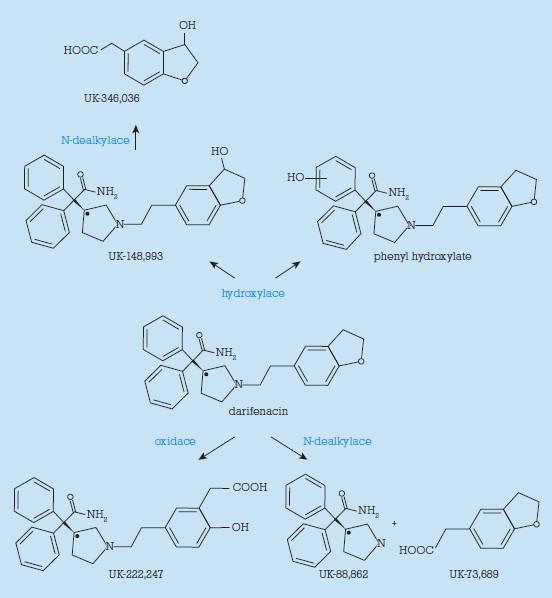 Metabolismus darifenacinu.