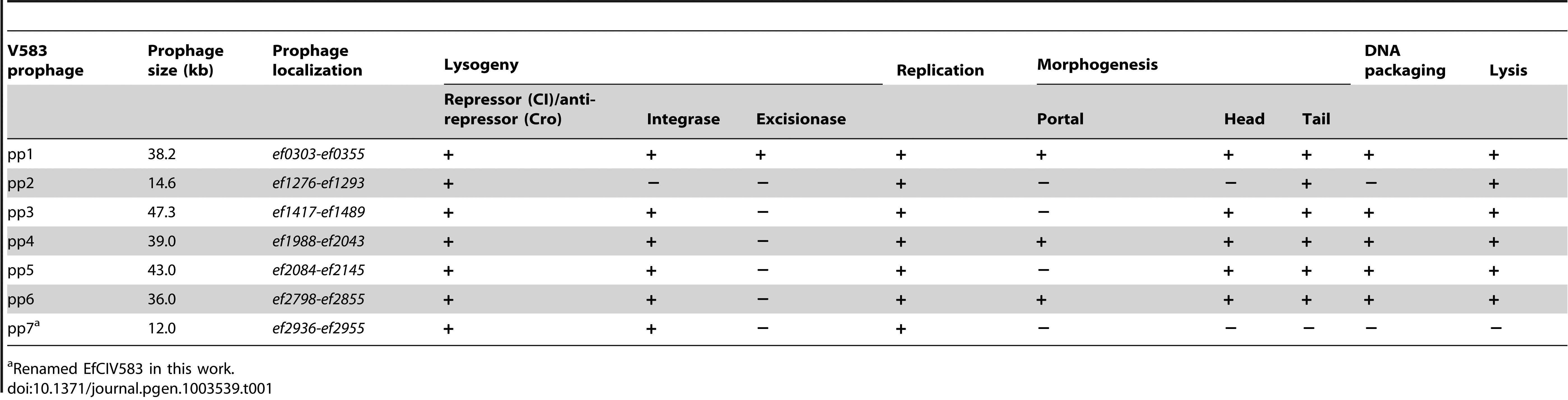Summary of predicted essential phage functions in V583 prophages.