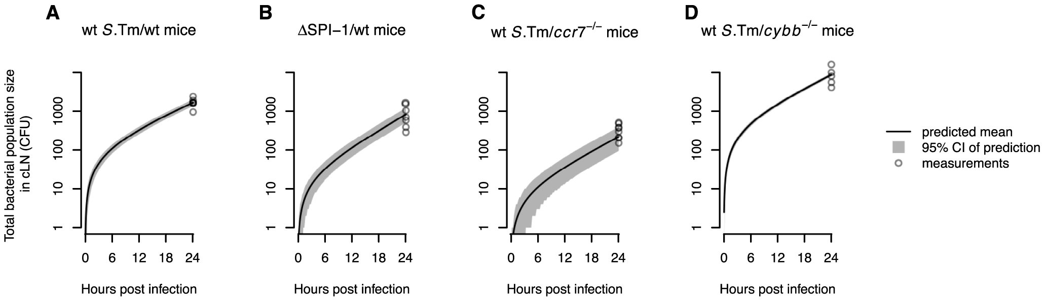 The WITS-based model predictions are consistent with the total bacterial population size measured in the cLN.