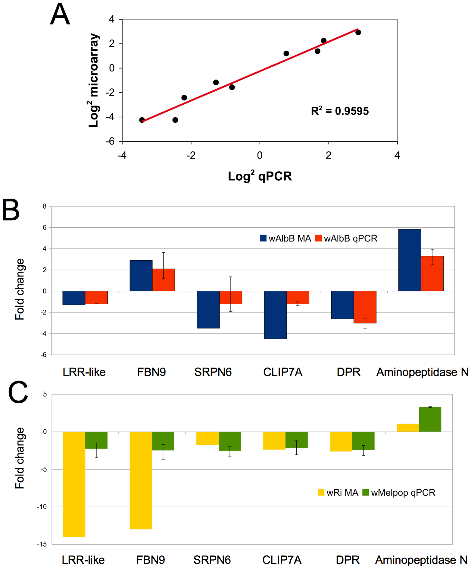 Validation of microarray data in cell culture and whole mosquitoes.