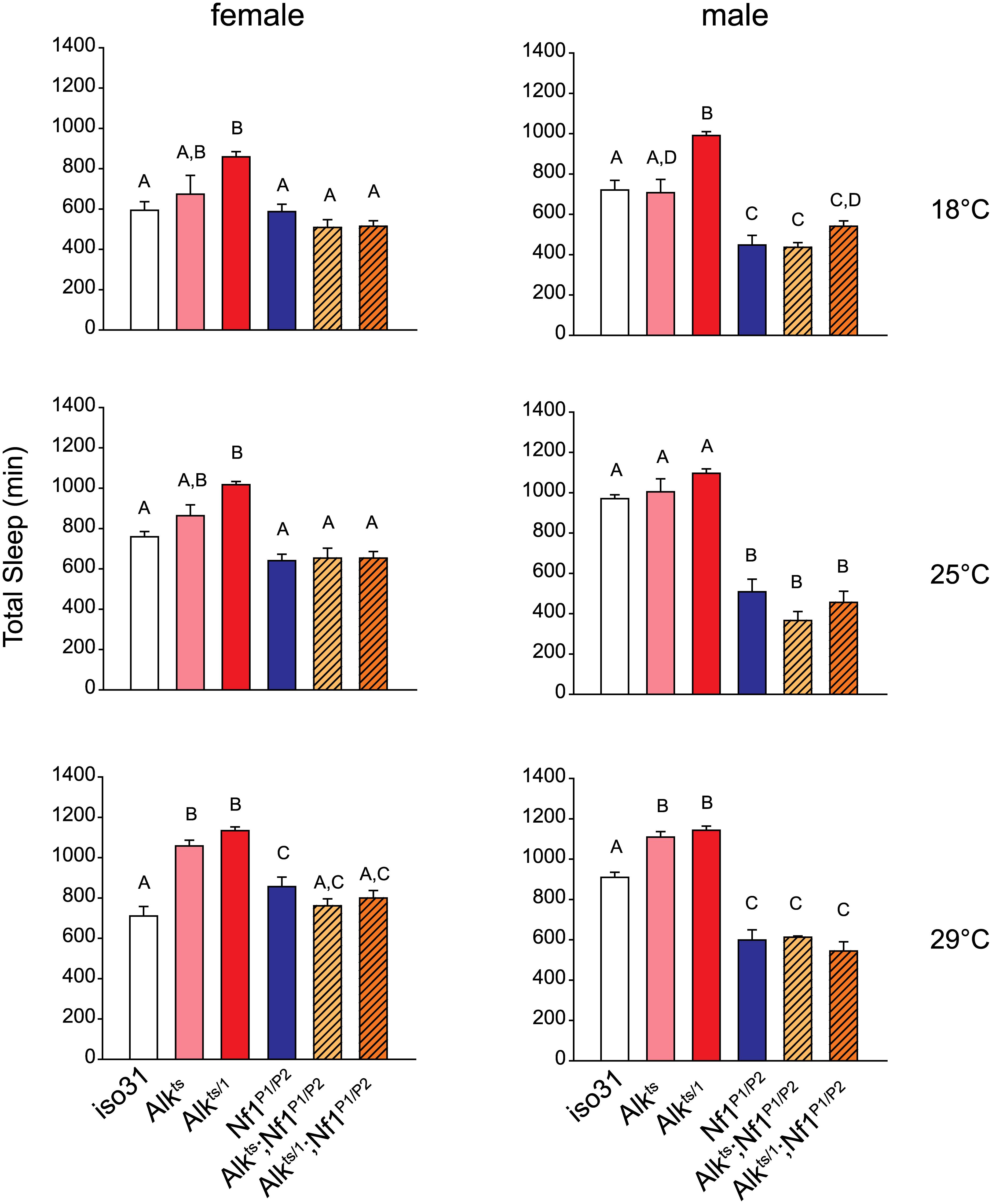 <i>Nf1</i> mutations suppress the long-sleep phenotype of <i>Alk</i> mutants.