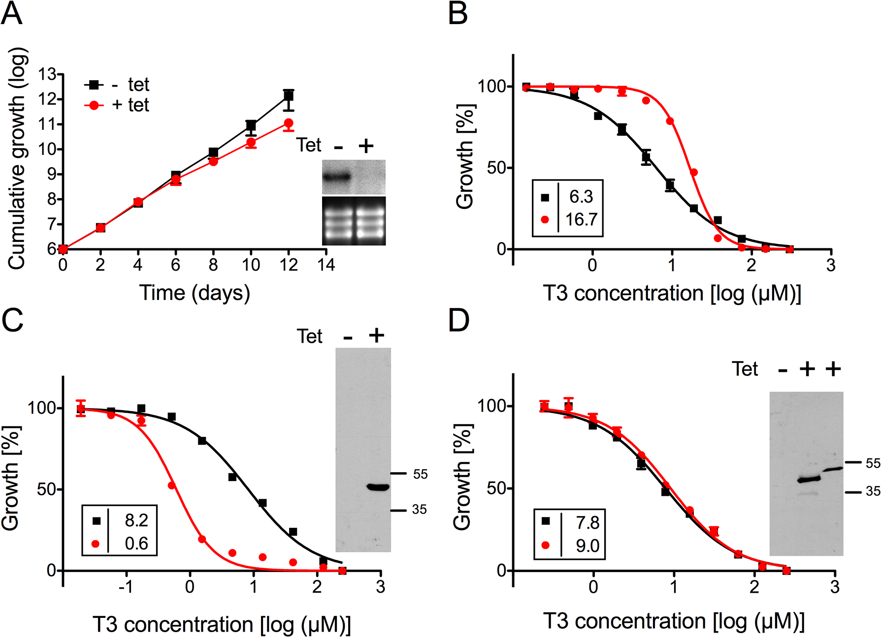 Sensitivity of <i>T</i>. <i>brucei</i> procyclic forms towards T3 after modulation of TbMCP14 expression.