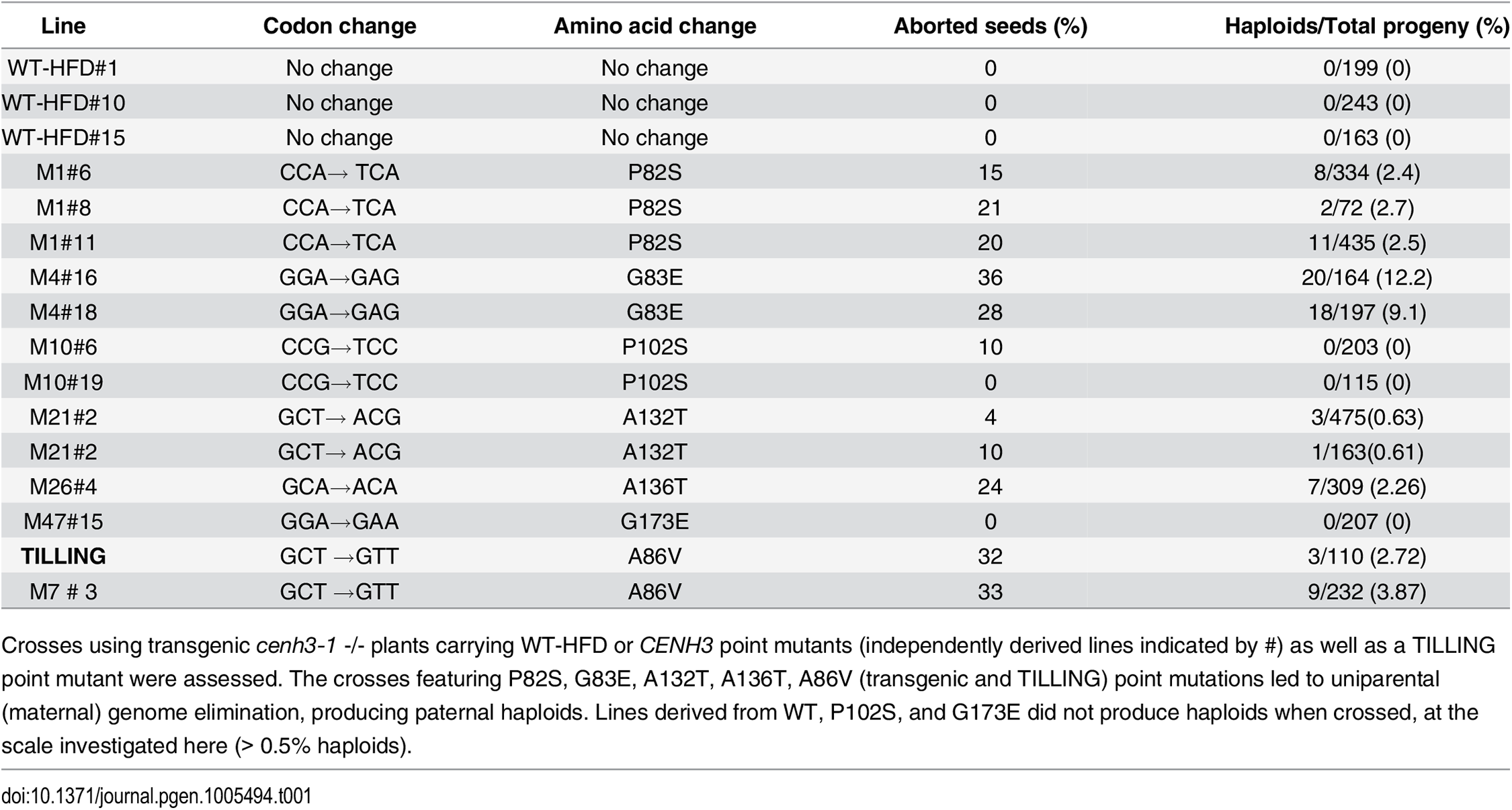 Haploid induction and seed abortion frequency of transgenic and TILLING lines used in this study.