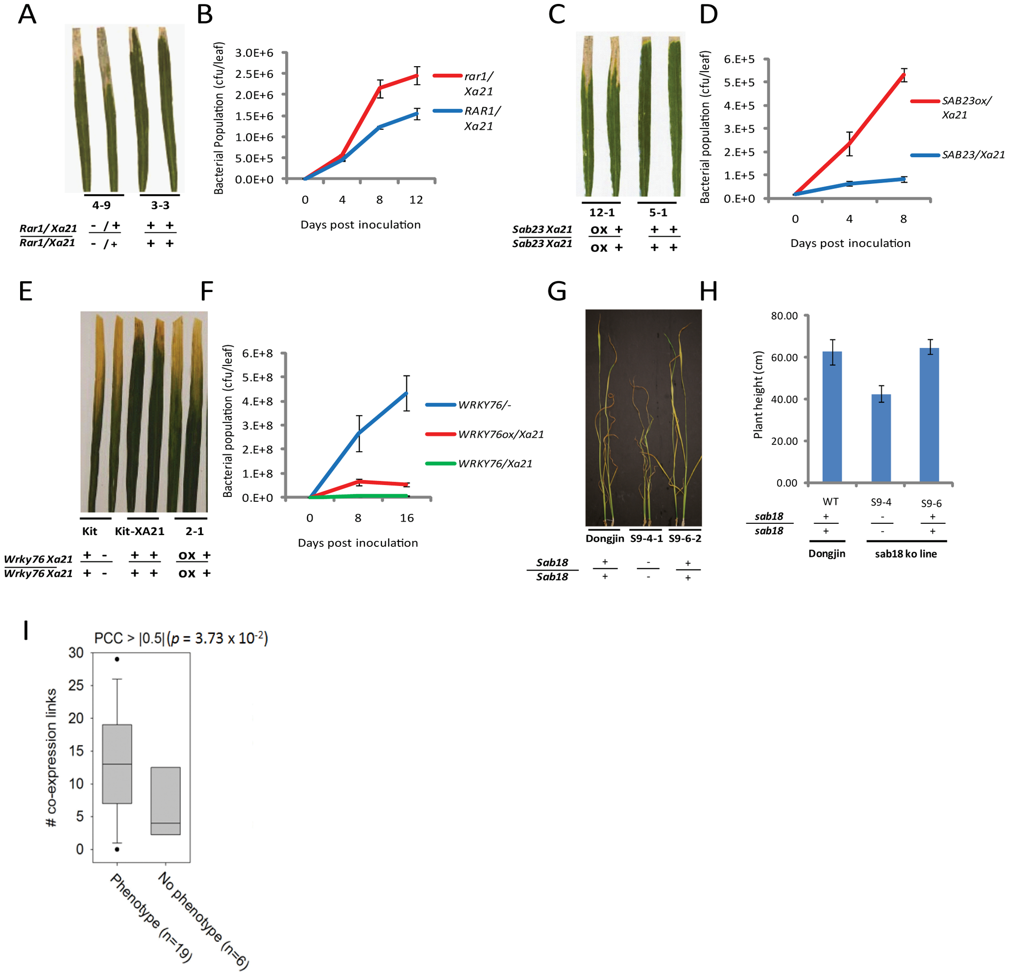 Representative evidence that interactome components function in rice stress responses.