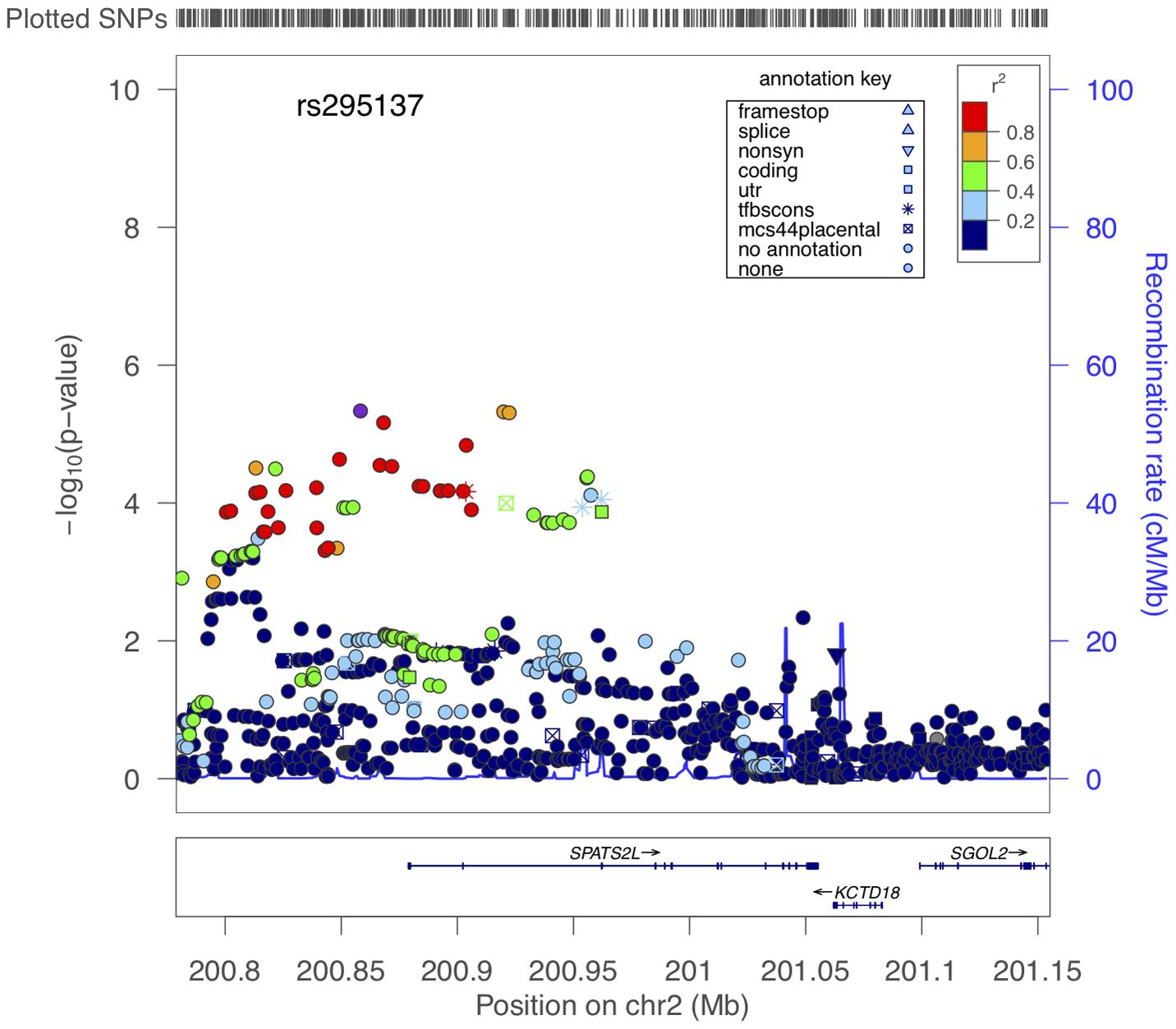 Region of association near <i>SPATS2L</i> SNPs to BDR.