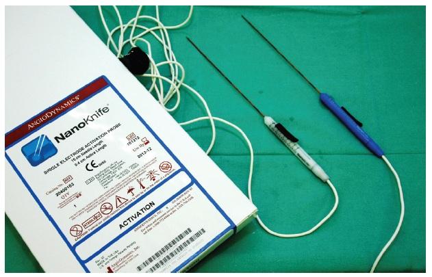 Jehlicové elektrody NanoKnife pro ireverzibilní elektroporatizaci Fig. 3: NanoKnife´s probes for IRE