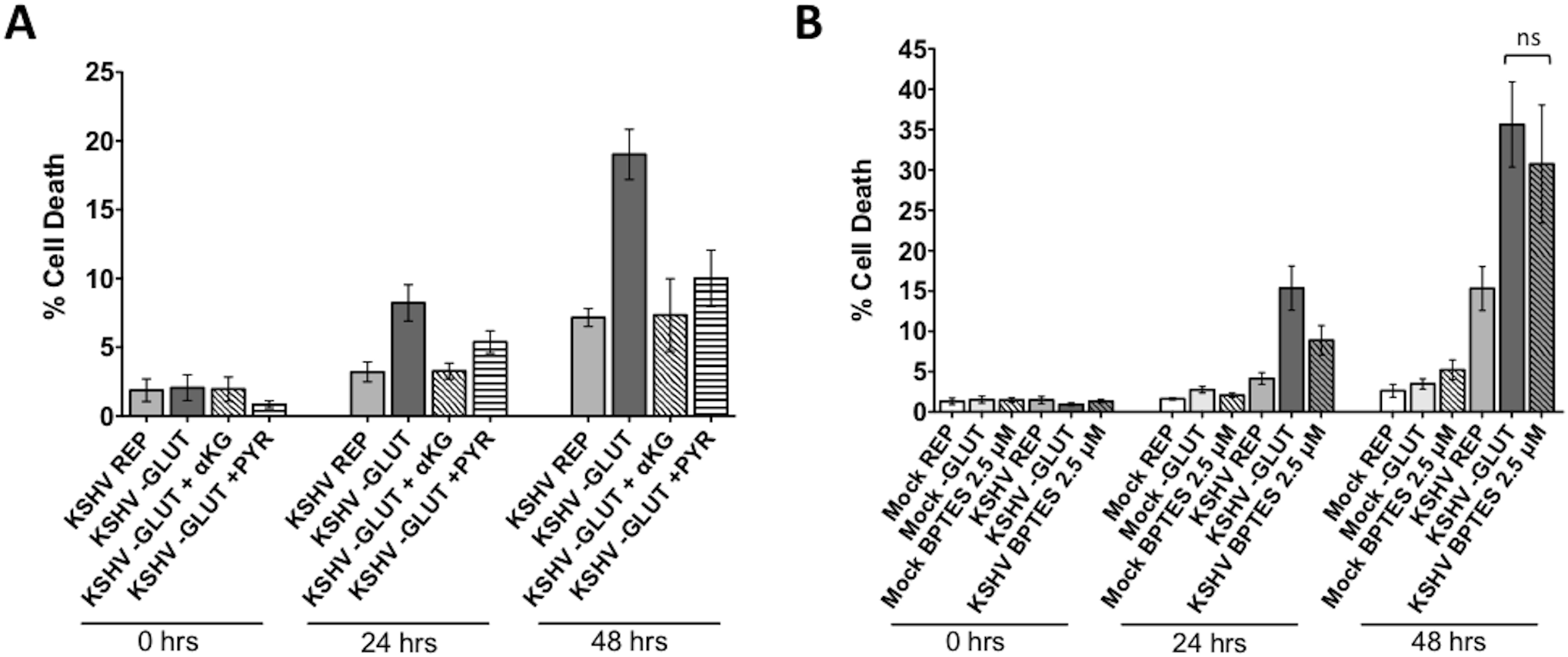 Glutamine is required for glutaminolysis in KSHV-infected endothelial cells.