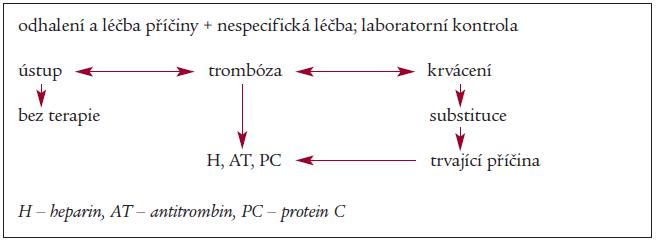 Schéma 2. Zásady teraoie DIC.