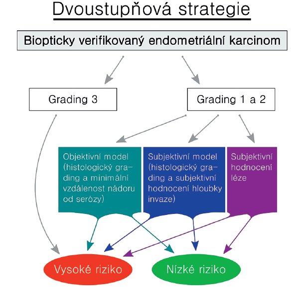 Schéma 1 Předoperační predikce přítomnosti zhoubného nádoru endometria s vysokým rizikem metastázování (schematický diagram dvoustupňové strategie)