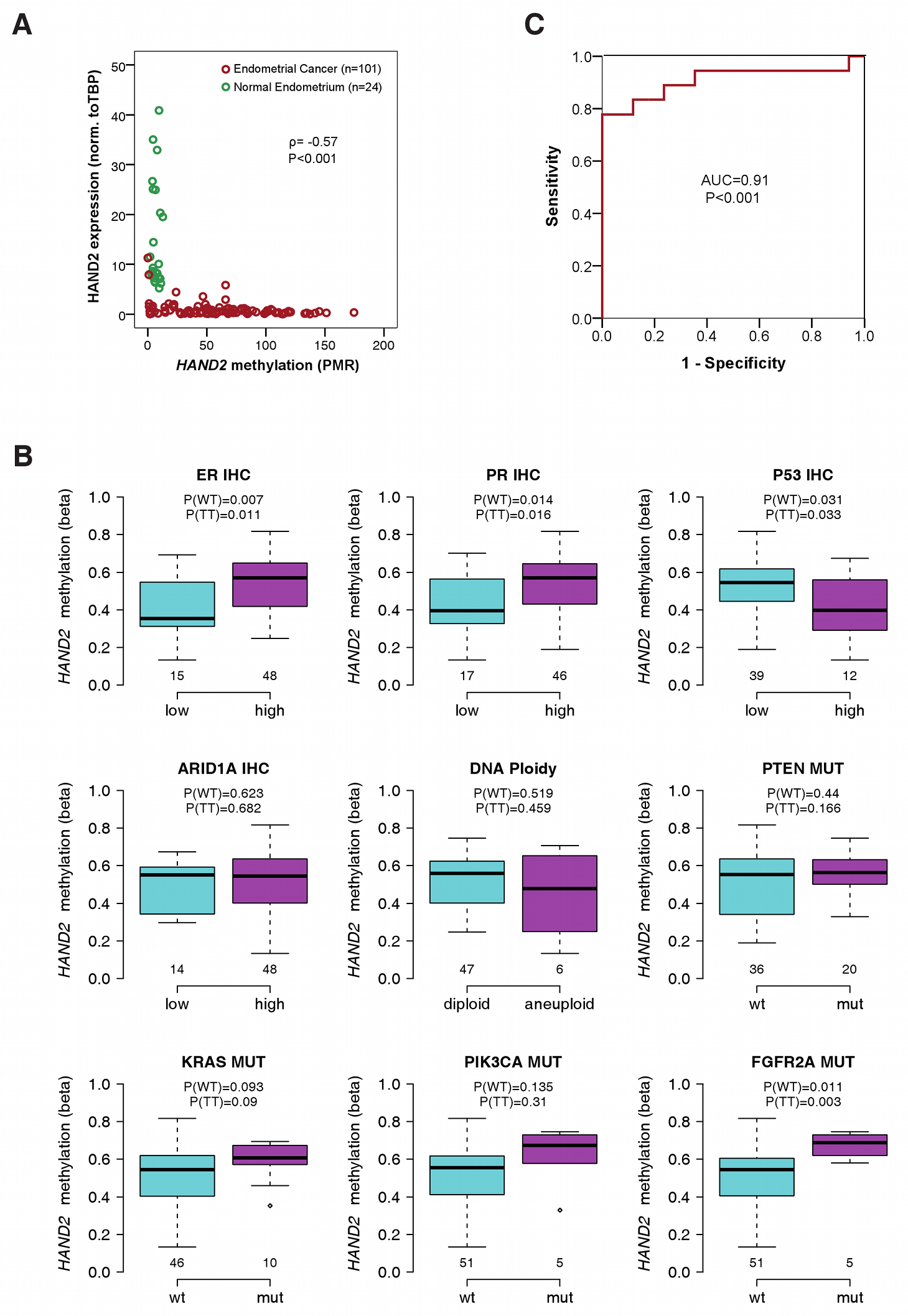 Association of <i>HAND2</i> methylation with molecular and clinical features in invasive endometrial cancer.
