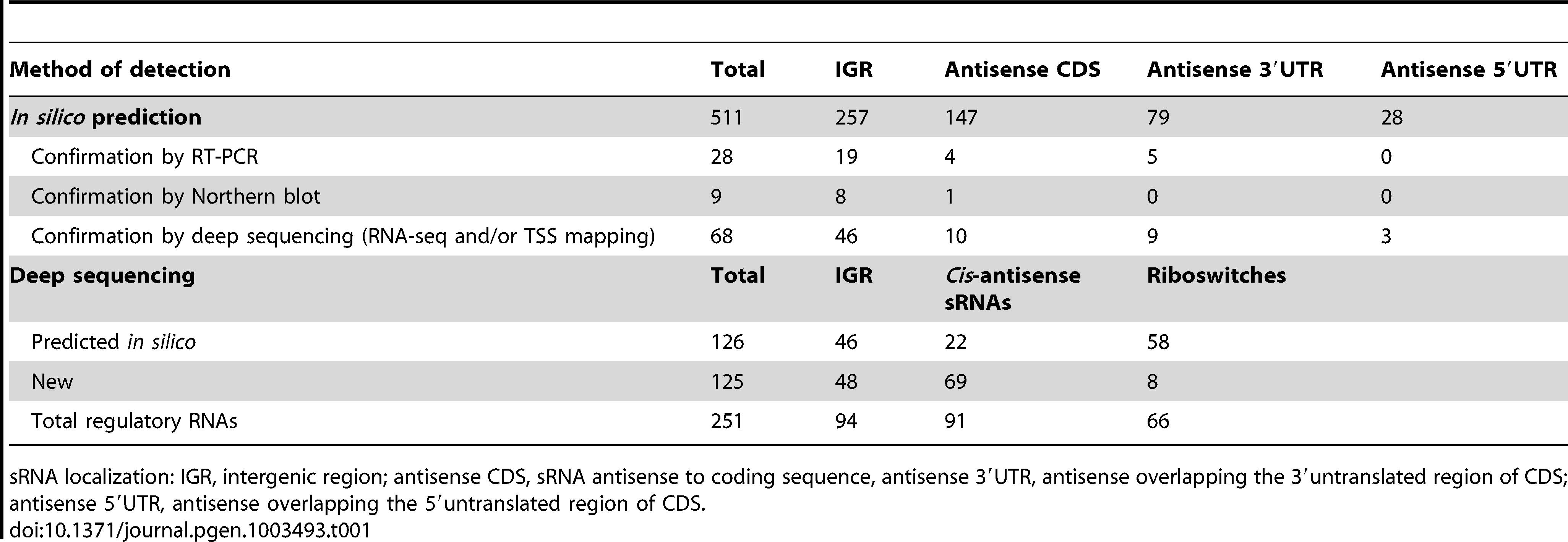 Summary of sRNA candidates in <i>C. difficile</i>.