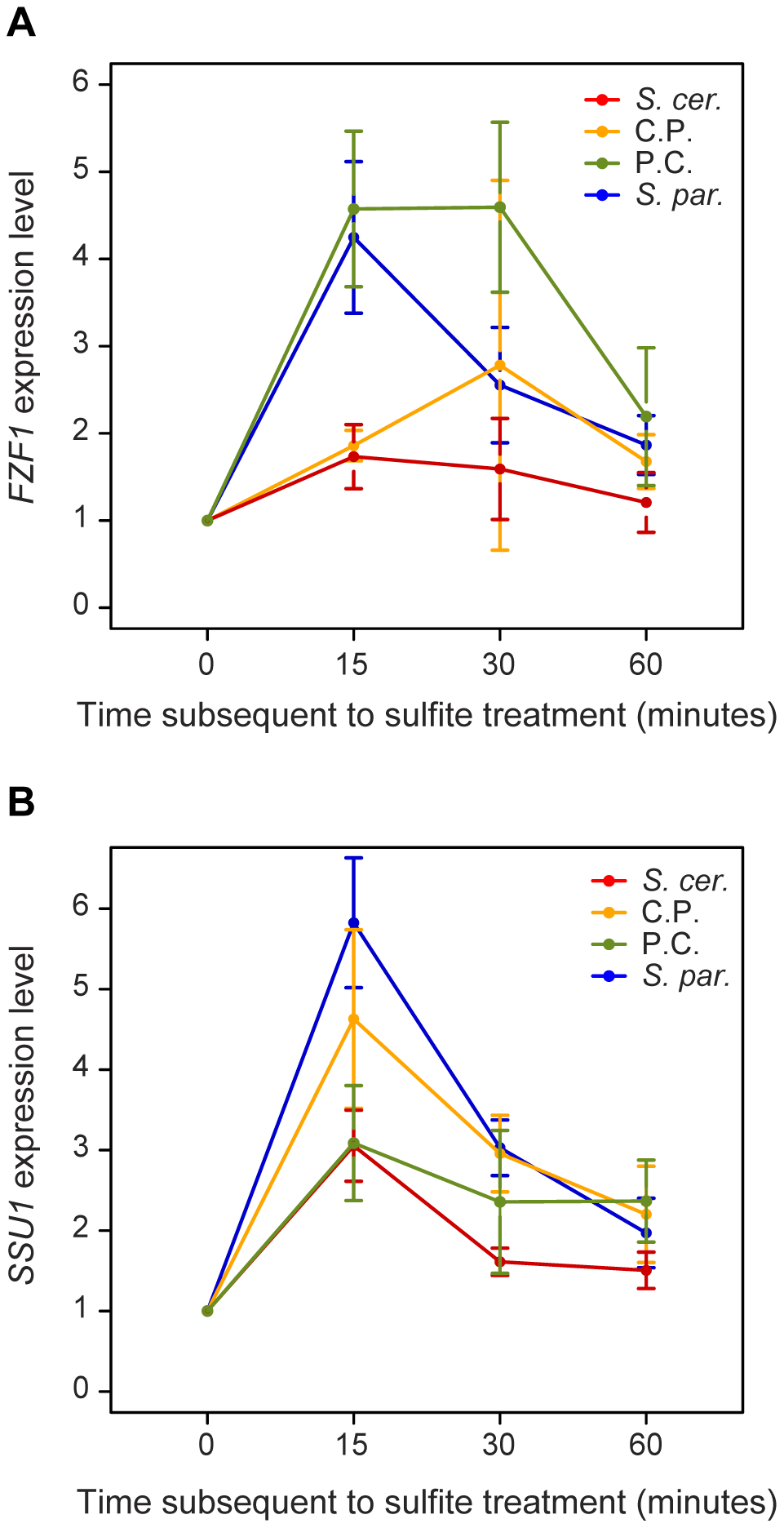 <i>FZF1</i> alleles affect the expression of both <i>FZF1</i> and <i>SSU1</i> subsequent to sulfite treatment.