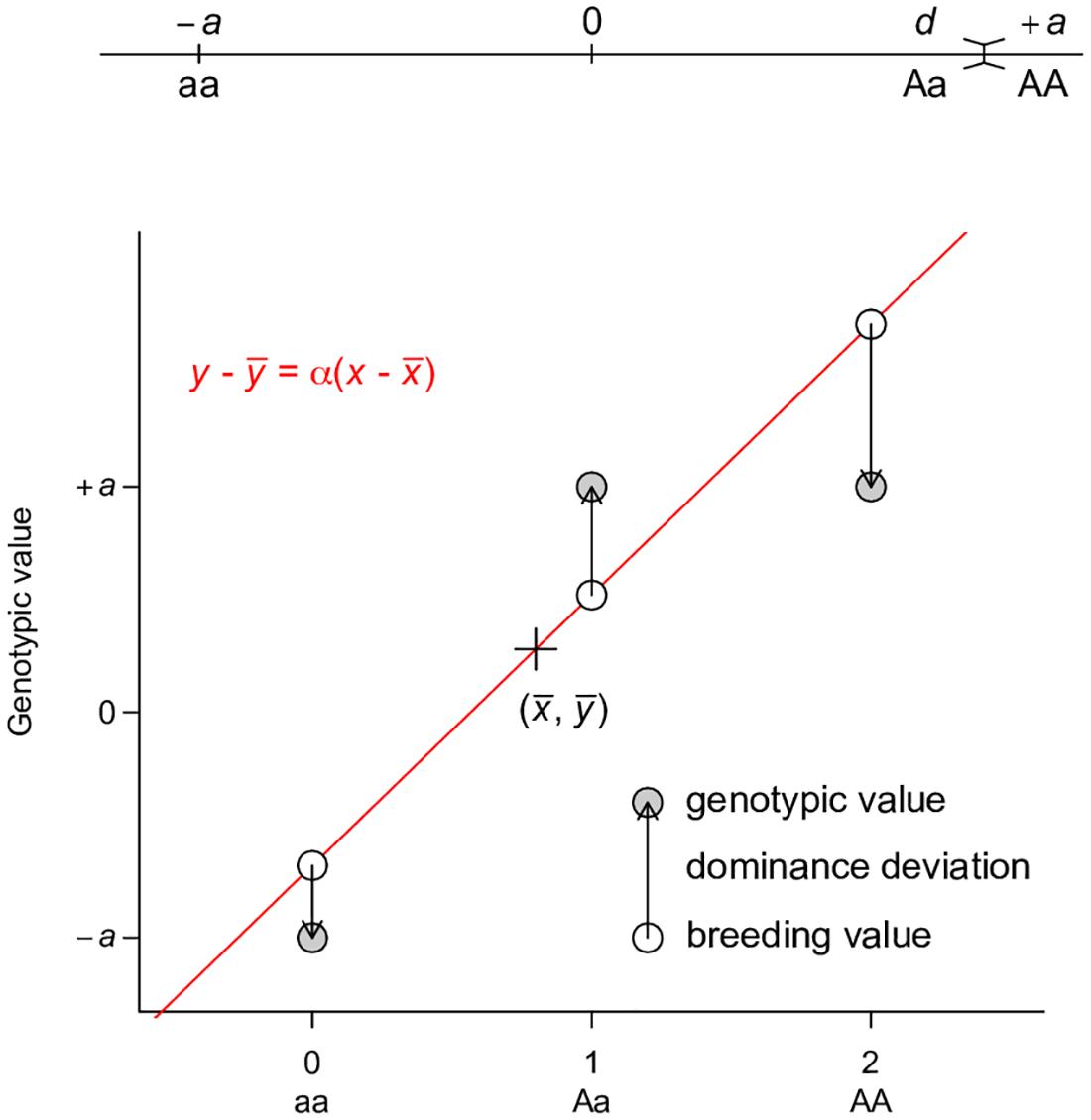 Least squares regression interpretation of <i>V</i><sub><i>A</i></sub>.