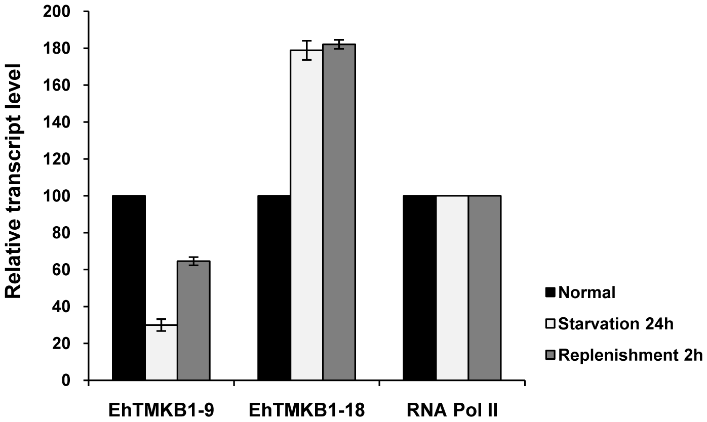 Expression analysis of EhTMKB1-9 and 18 by qRT-PCR.