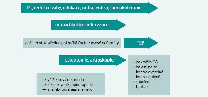 Schéma. Léčebná strategie u osteoartrózy: základní péče o osteoartrózu kolena je konzervativní; k implantaci TEP kolena jsou indikováni pacienti, kteří nereagují na konzervativní terapii, resp. předchozí chirurgickou terapii