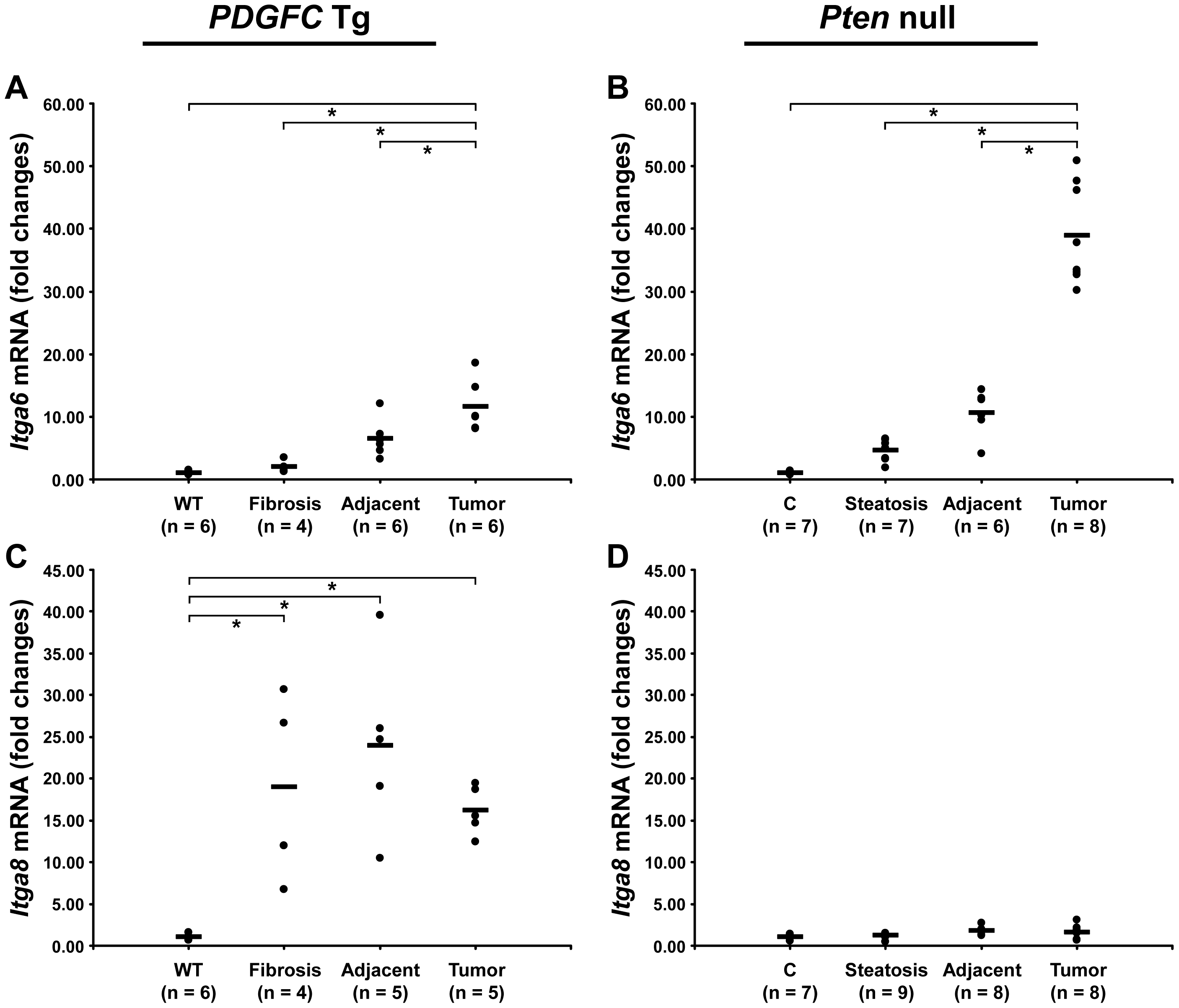 Expression of integrin α6 and α8 mRNAs upon disease progression in <i>PDGFC</i> Tg and <i>Pten</i> null liver.