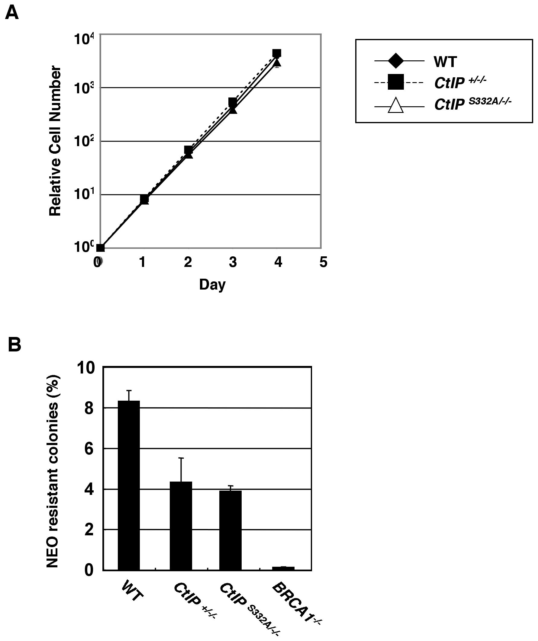 Proficient homologous recombination in <i>CtIP<sup>S332A/−/−</sup></i> clones.